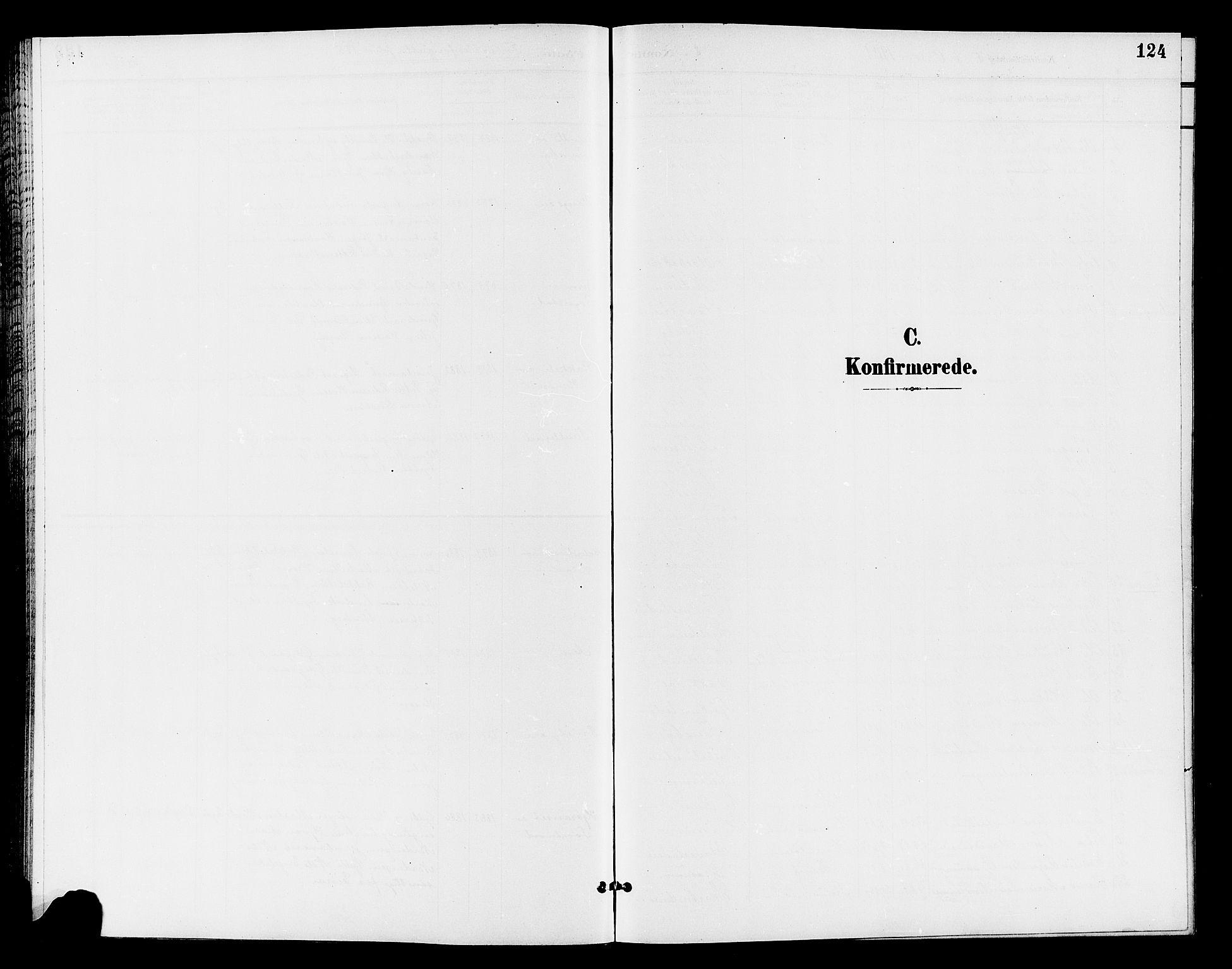 SAH, Østre Toten prestekontor, Klokkerbok nr. 7, 1901-1912, s. 124