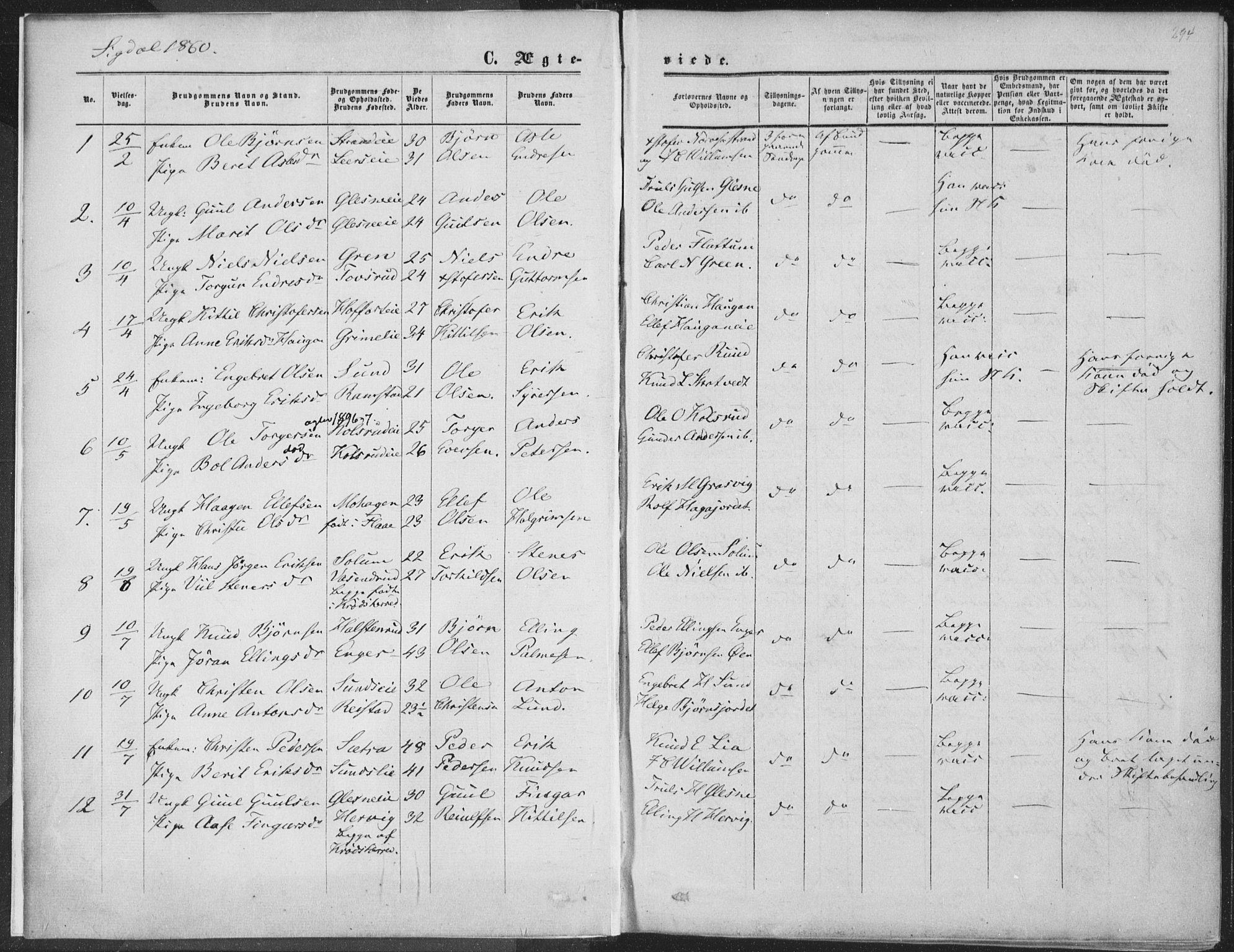 SAKO, Sigdal kirkebøker, F/Fa/L0009b: Ministerialbok nr. I 9B, 1860-1871, s. 294