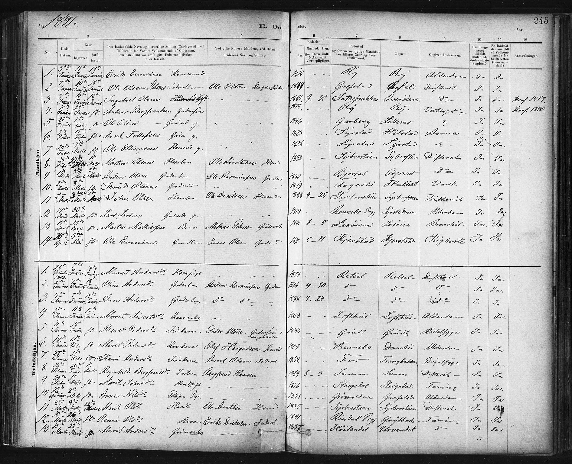 SAT, Ministerialprotokoller, klokkerbøker og fødselsregistre - Sør-Trøndelag, 672/L0857: Ministerialbok nr. 672A09, 1882-1893, s. 245