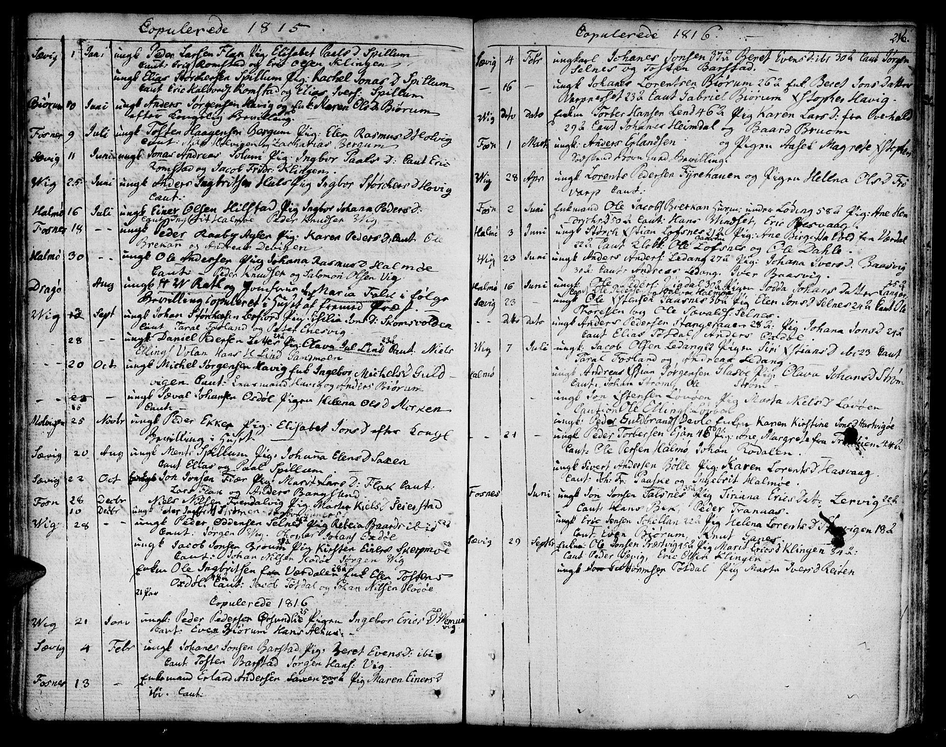 SAT, Ministerialprotokoller, klokkerbøker og fødselsregistre - Nord-Trøndelag, 773/L0608: Ministerialbok nr. 773A02, 1784-1816, s. 216