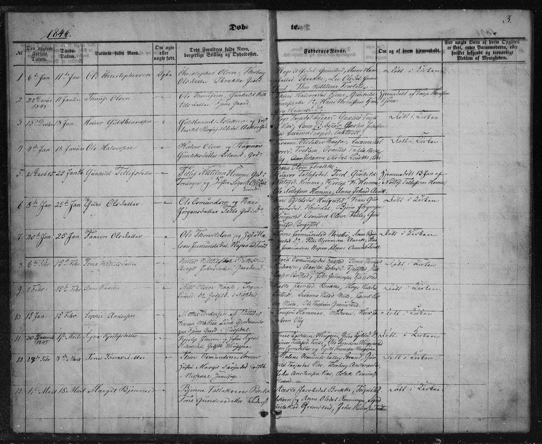 SAKO, Nissedal kirkebøker, F/Fa/L0003: Ministerialbok nr. I 3, 1846-1870, s. 2-3