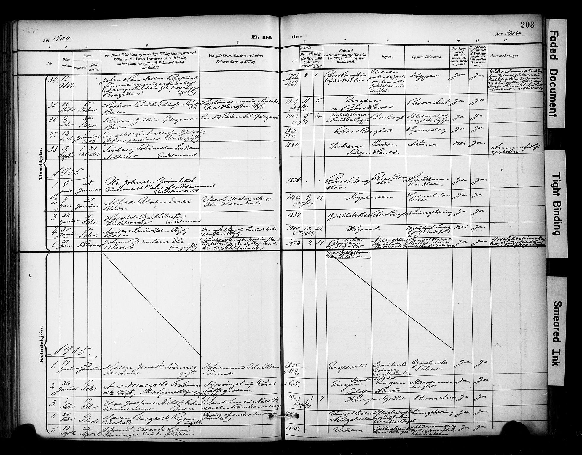 SAT, Ministerialprotokoller, klokkerbøker og fødselsregistre - Sør-Trøndelag, 681/L0936: Ministerialbok nr. 681A14, 1899-1908, s. 203