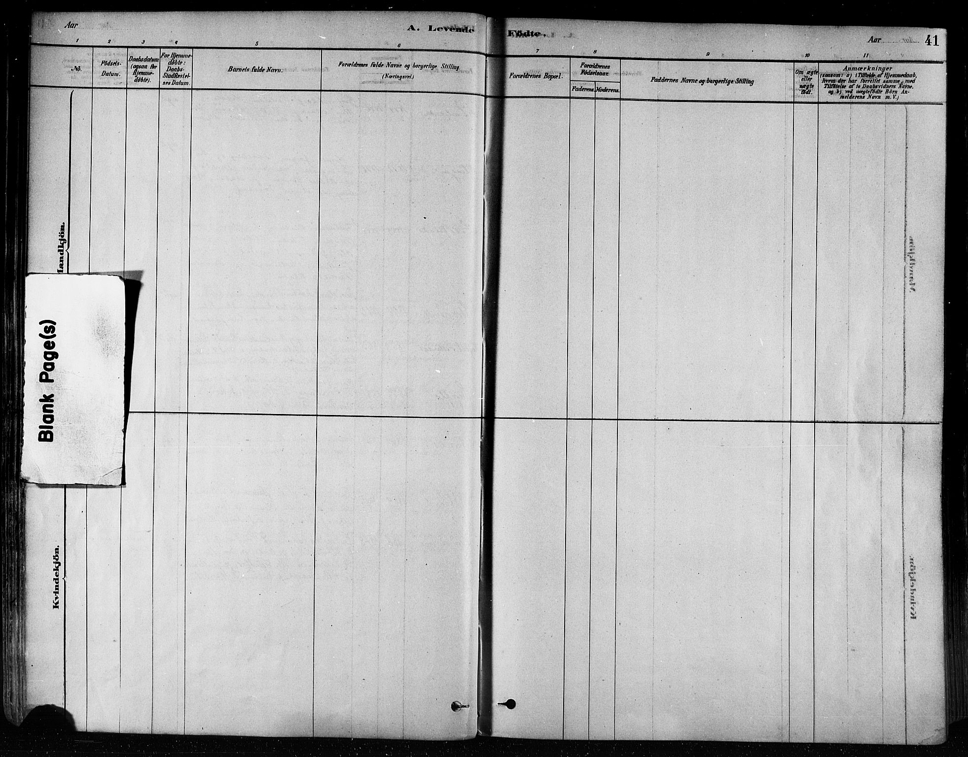 SAT, Ministerialprotokoller, klokkerbøker og fødselsregistre - Nord-Trøndelag, 746/L0448: Ministerialbok nr. 746A07 /1, 1878-1900, s. 41