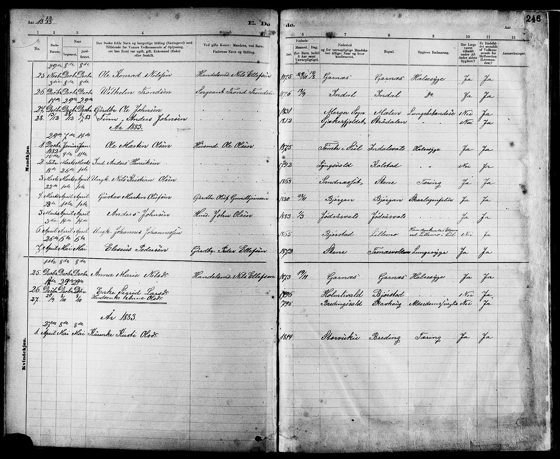 SAT, Ministerialprotokoller, klokkerbøker og fødselsregistre - Nord-Trøndelag, 724/L0267: Klokkerbok nr. 724C03, 1879-1898, s. 246