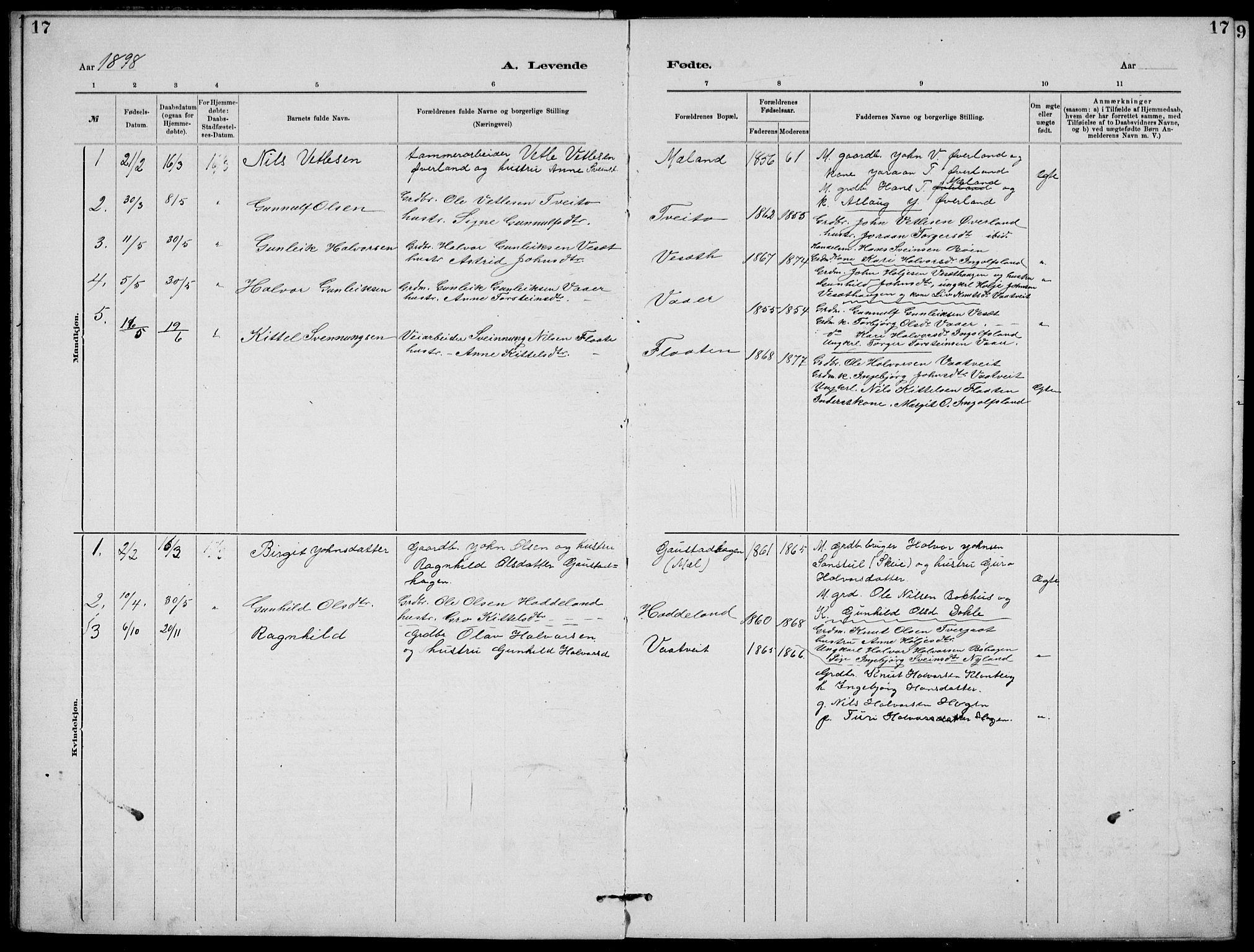 SAKO, Rjukan kirkebøker, G/Ga/L0001: Klokkerbok nr. 1, 1880-1914, s. 17