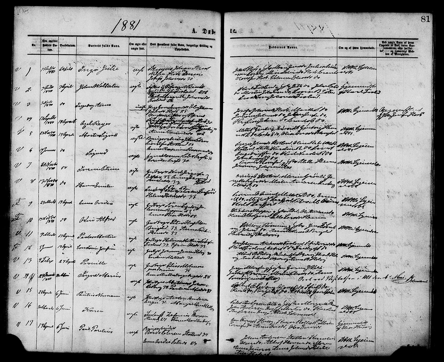 SAT, Ministerialprotokoller, klokkerbøker og fødselsregistre - Nord-Trøndelag, 773/L0616: Ministerialbok nr. 773A07, 1870-1887, s. 81