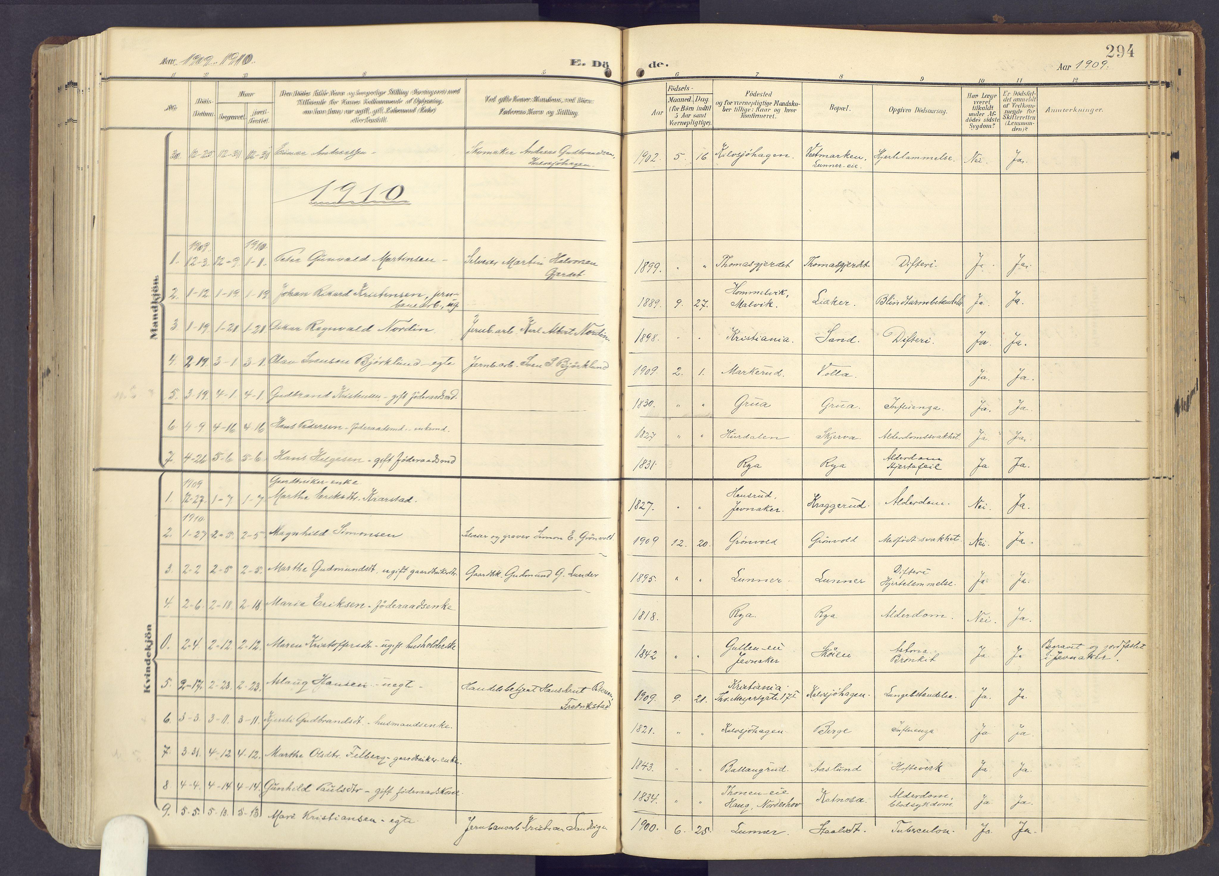 SAH, Lunner prestekontor, H/Ha/Haa/L0001: Ministerialbok nr. 1, 1907-1922, s. 294