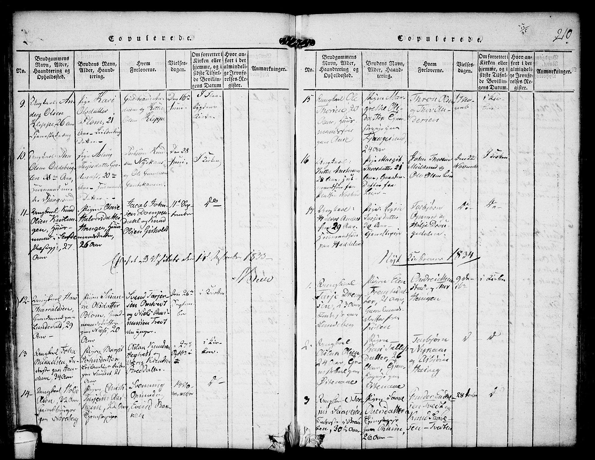 SAKO, Kviteseid kirkebøker, F/Fa/L0005: Ministerialbok nr. I 5, 1815-1836, s. 210