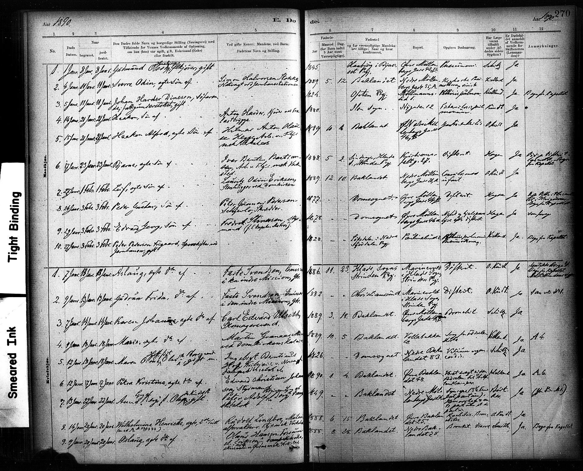 SAT, Ministerialprotokoller, klokkerbøker og fødselsregistre - Sør-Trøndelag, 604/L0189: Ministerialbok nr. 604A10, 1878-1892, s. 270