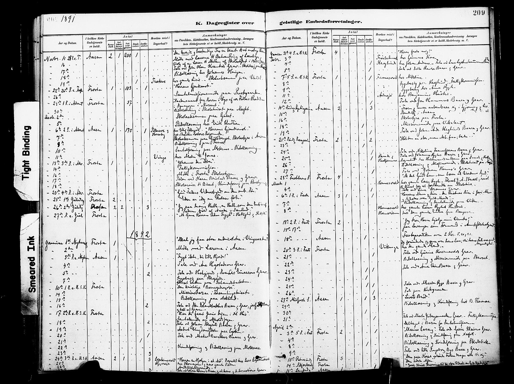 SAT, Ministerialprotokoller, klokkerbøker og fødselsregistre - Nord-Trøndelag, 713/L0121: Ministerialbok nr. 713A10, 1888-1898, s. 209
