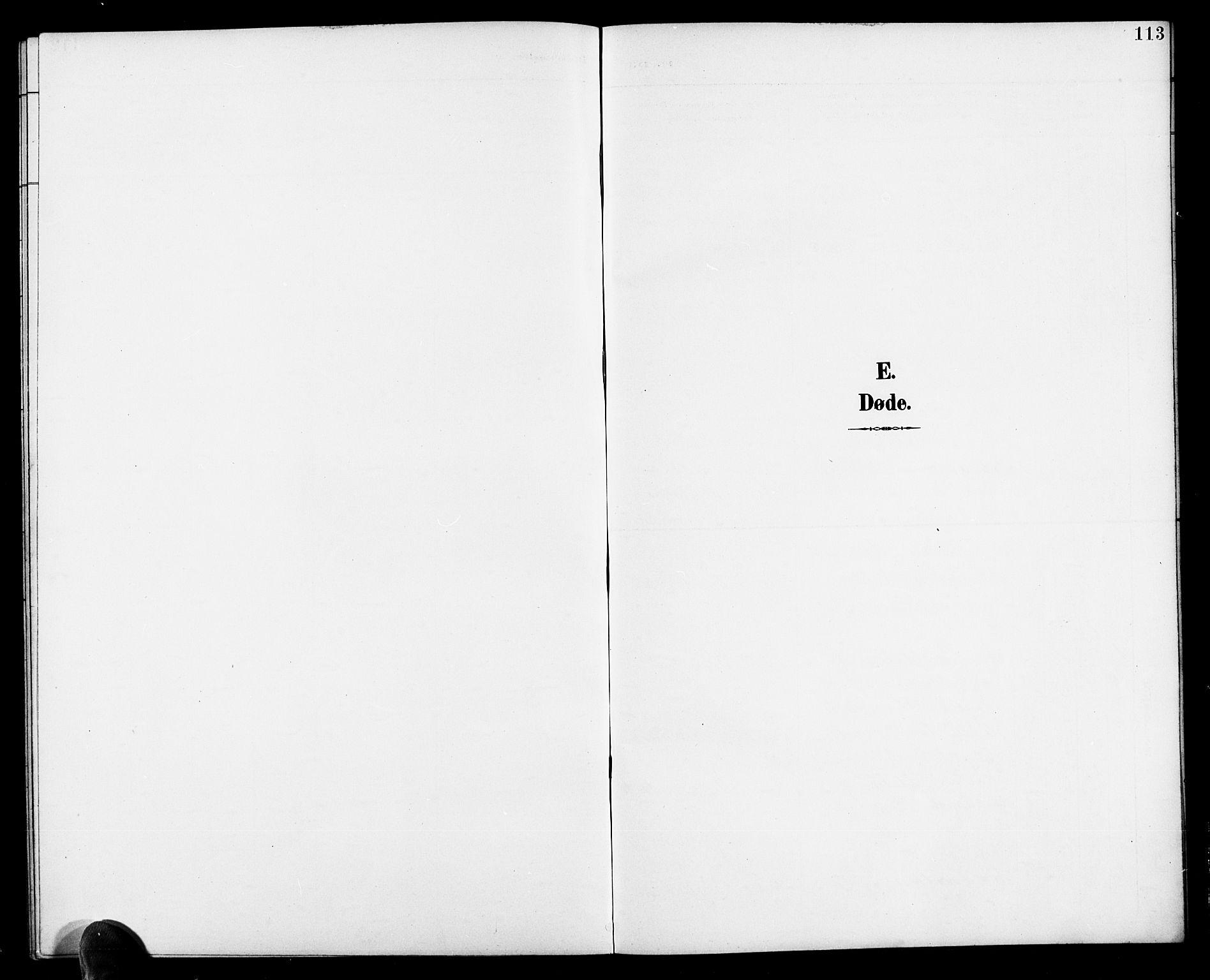 SAK, Herefoss sokneprestkontor, F/Fb/Fbb/L0003: Klokkerbok nr. B 3, 1892-1917, s. 113
