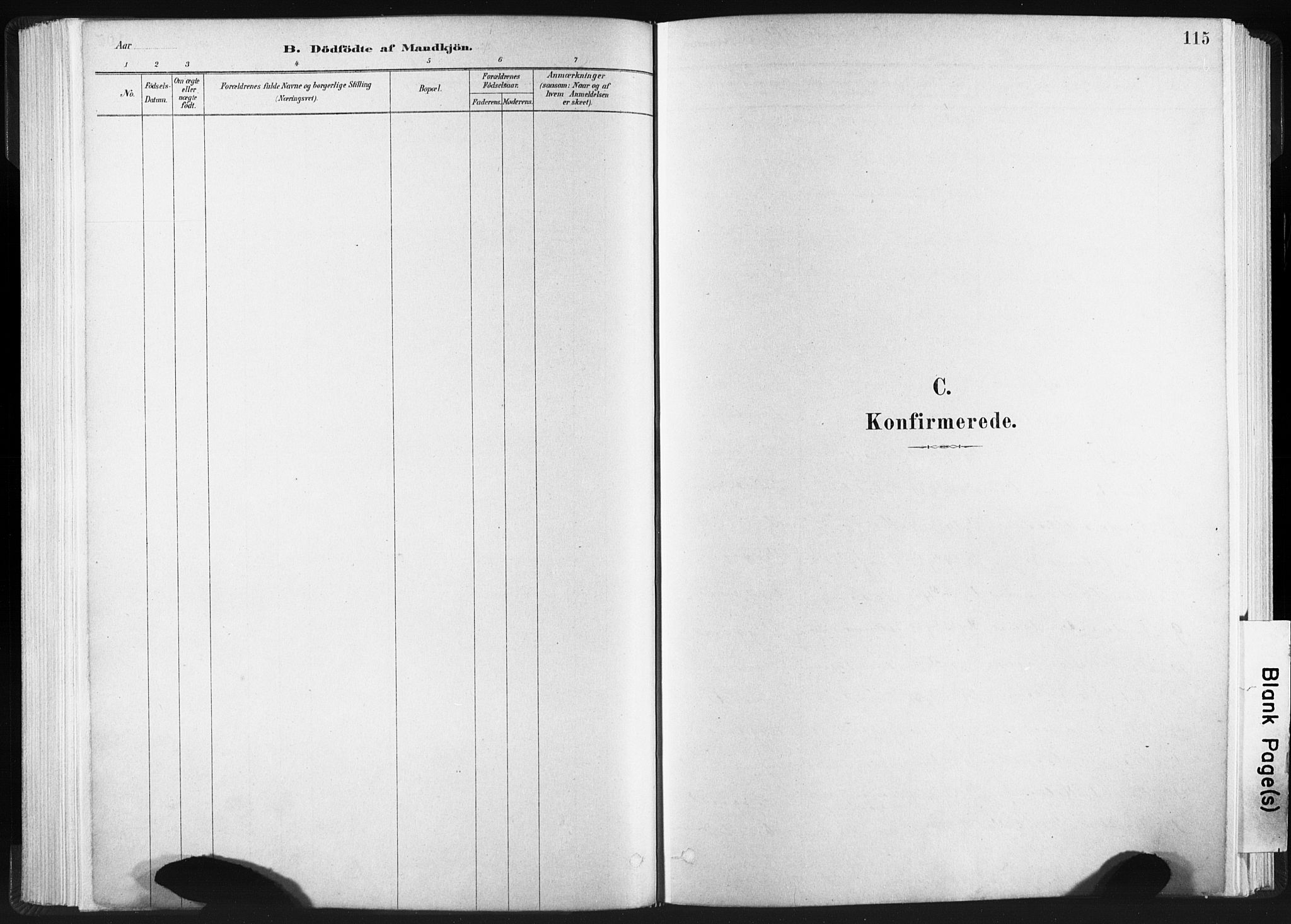 SAT, Ministerialprotokoller, klokkerbøker og fødselsregistre - Sør-Trøndelag, 665/L0773: Ministerialbok nr. 665A08, 1879-1905, s. 115