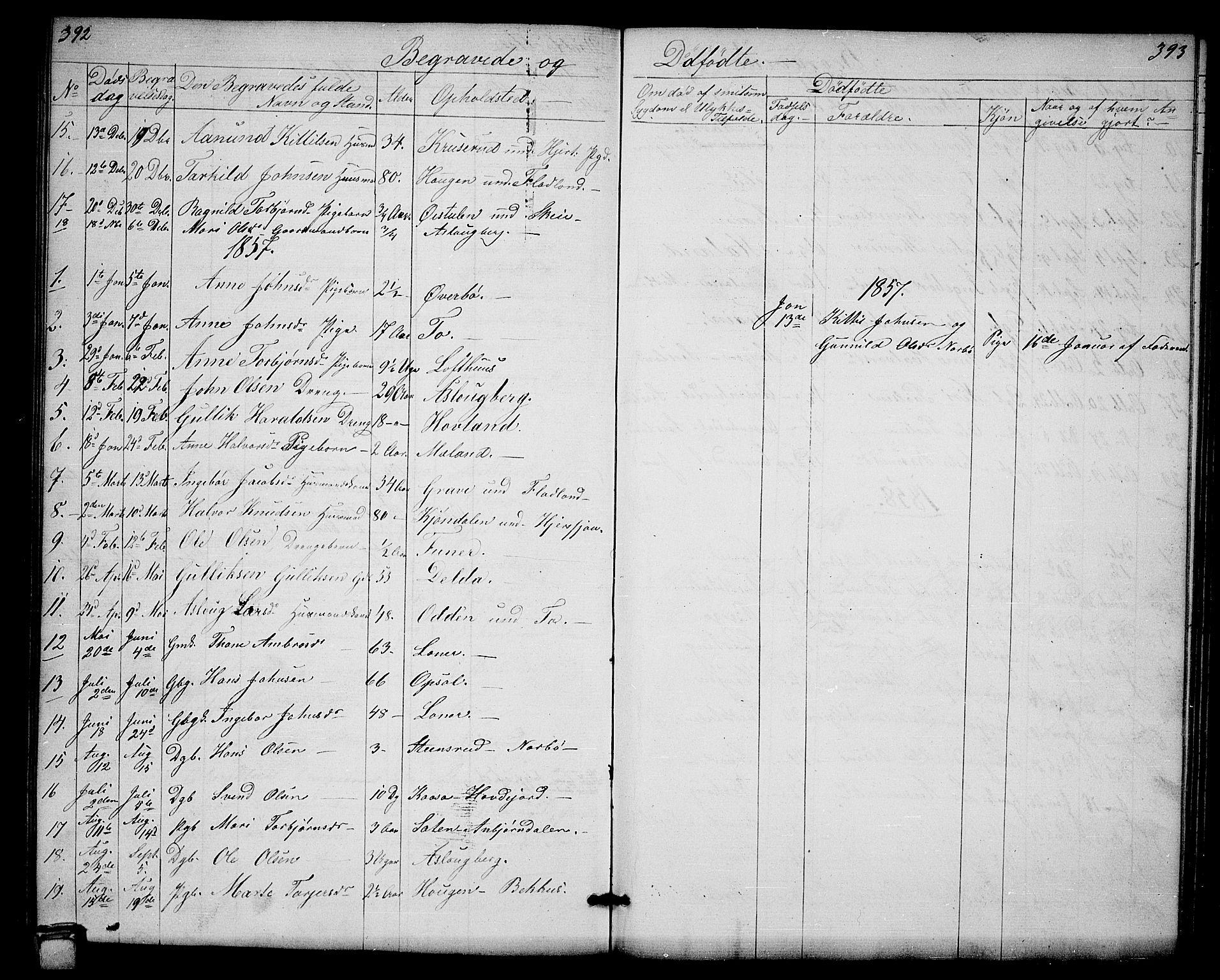 SAKO, Hjartdal kirkebøker, G/Ga/L0002: Klokkerbok nr. I 2, 1854-1888, s. 392-393