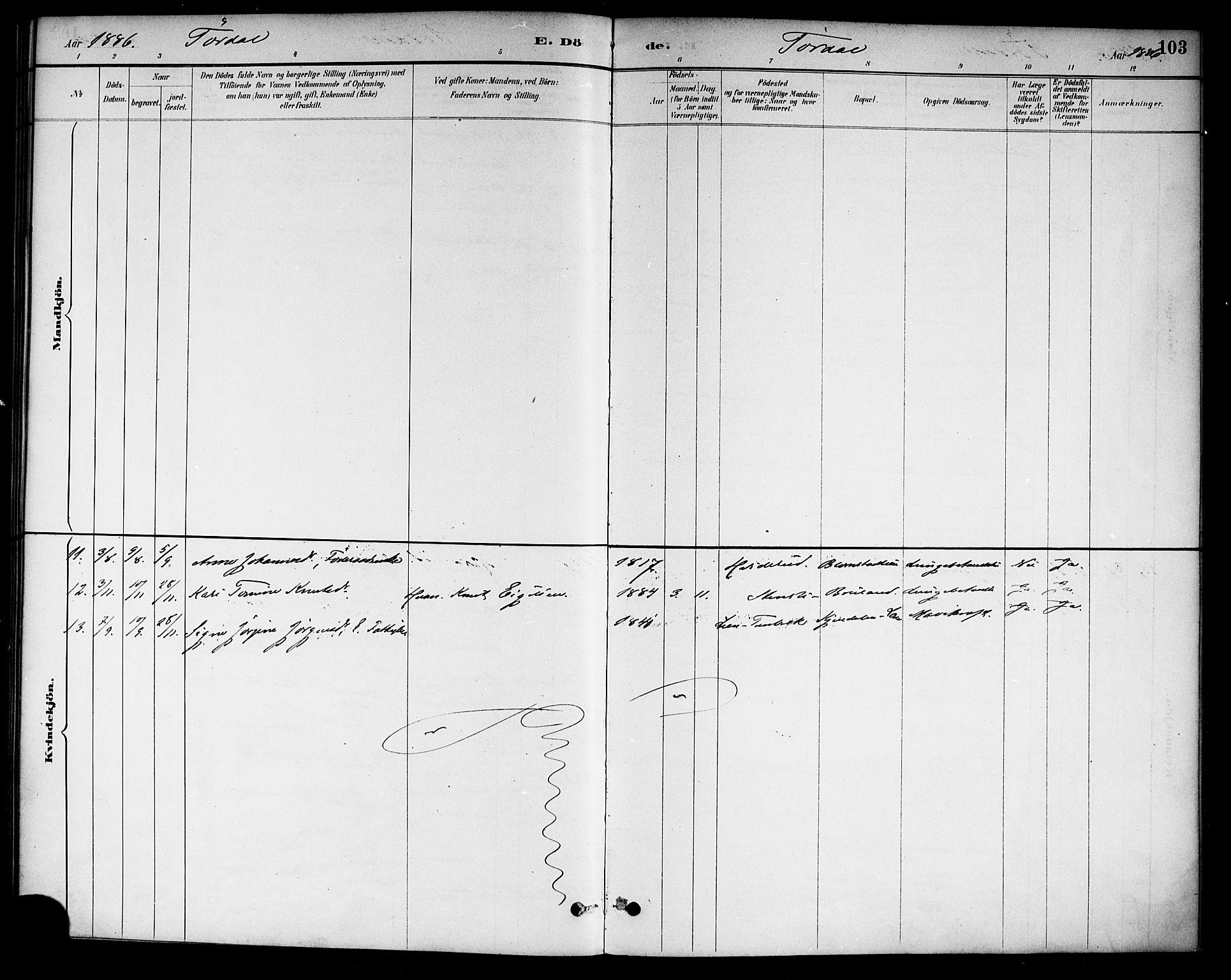 SAKO, Drangedal kirkebøker, F/Fa/L0011: Ministerialbok nr. 11 /2, 1885-1894, s. 103