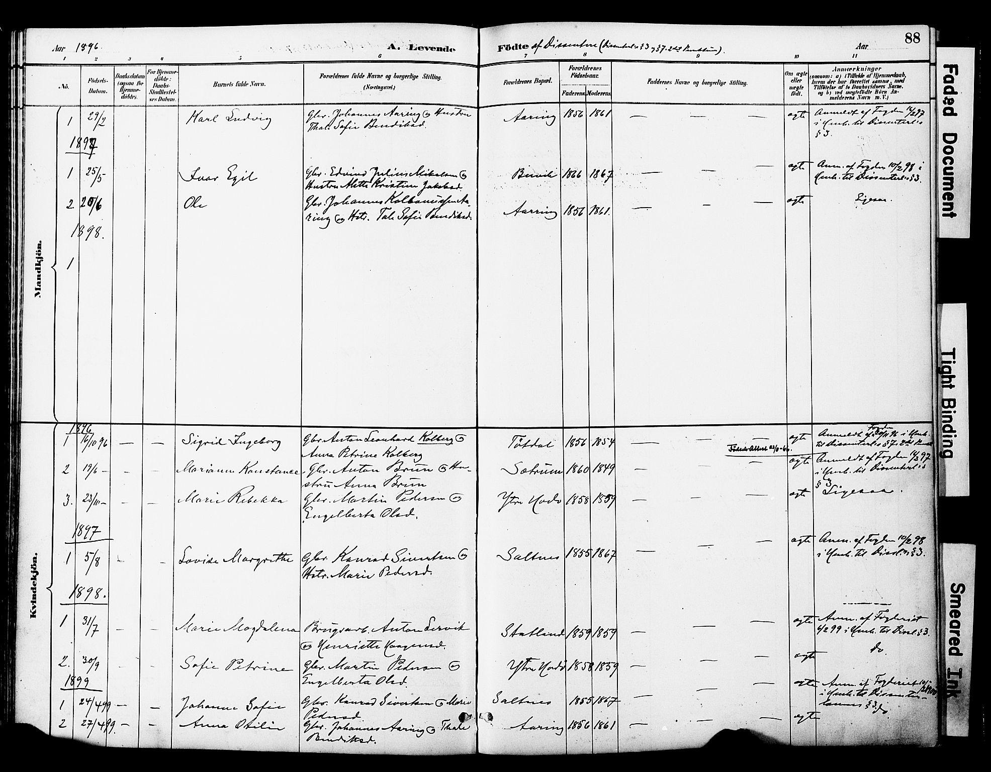 SAT, Ministerialprotokoller, klokkerbøker og fødselsregistre - Nord-Trøndelag, 774/L0628: Ministerialbok nr. 774A02, 1887-1903, s. 88