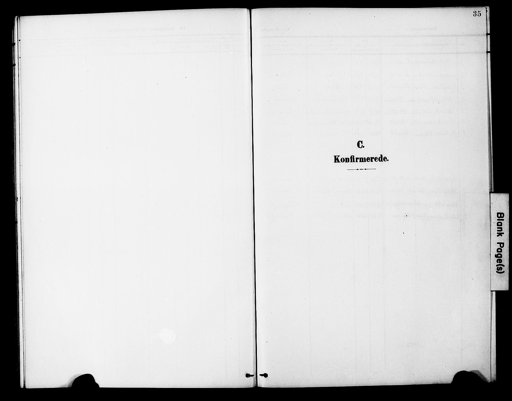 SAT, Ministerialprotokoller, klokkerbøker og fødselsregistre - Nord-Trøndelag, 746/L0452: Ministerialbok nr. 746A09, 1900-1908, s. 35