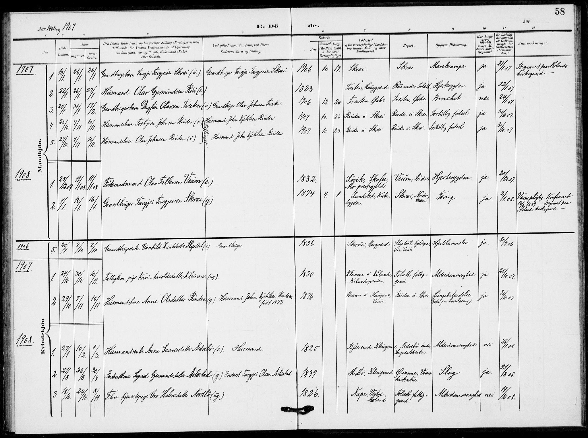 SAKO, Fyresdal kirkebøker, F/Fb/L0004: Ministerialbok nr. II 4, 1903-1920, s. 58
