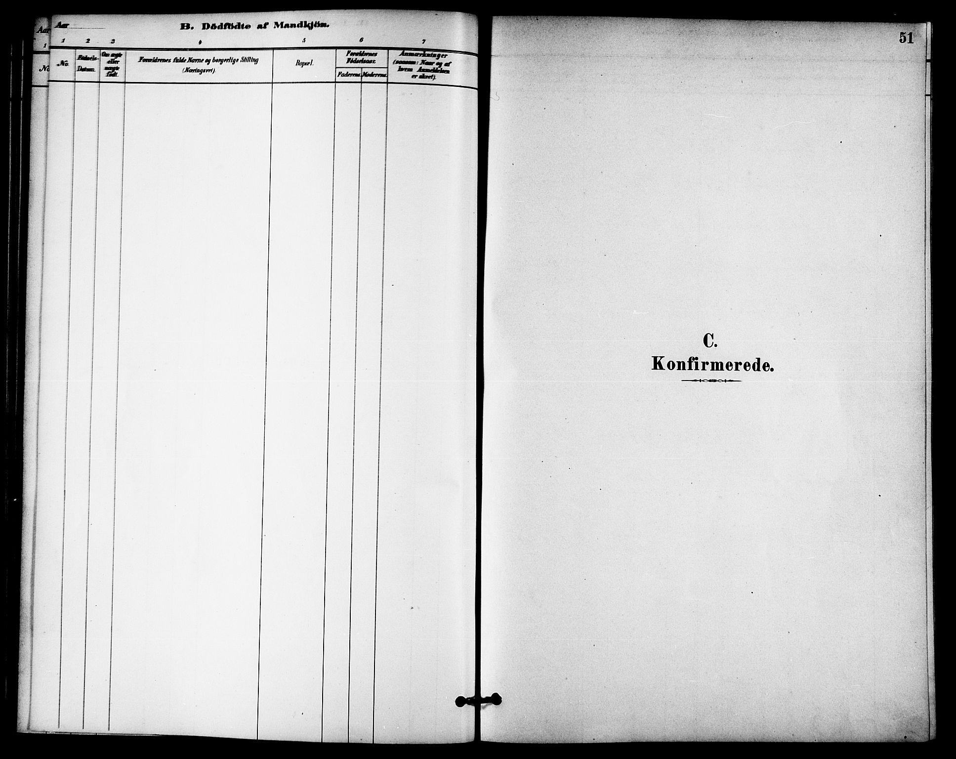 SAT, Ministerialprotokoller, klokkerbøker og fødselsregistre - Nord-Trøndelag, 740/L0378: Ministerialbok nr. 740A01, 1881-1895, s. 51