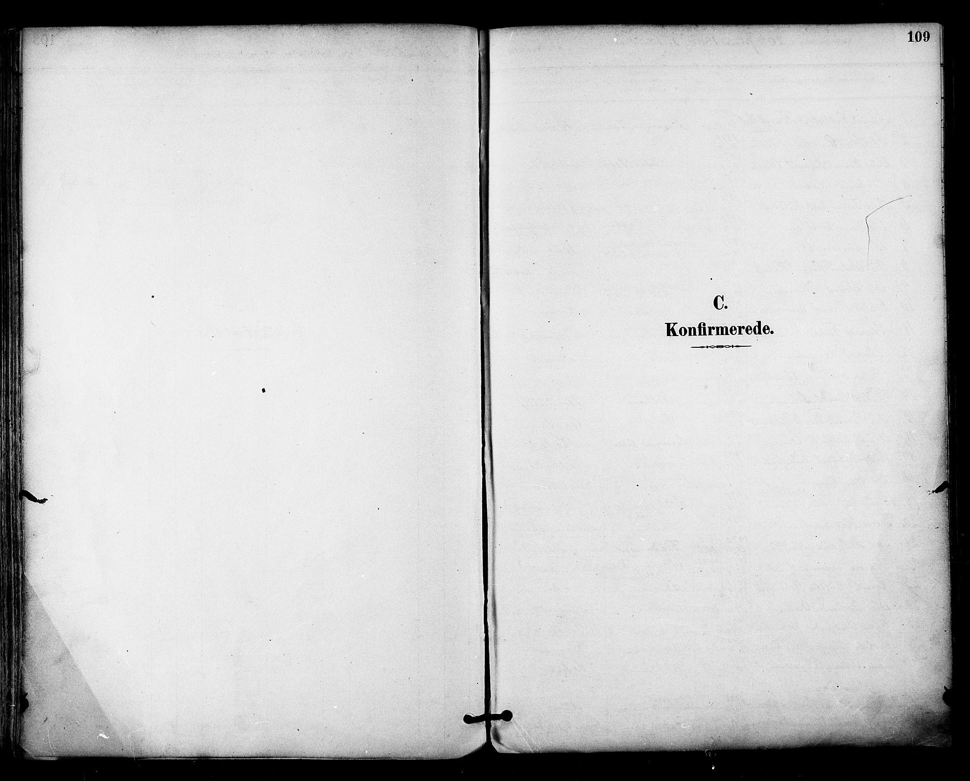 SAT, Ministerialprotokoller, klokkerbøker og fødselsregistre - Nordland, 813/L0200: Ministerialbok nr. 813A10, 1886-1900, s. 109