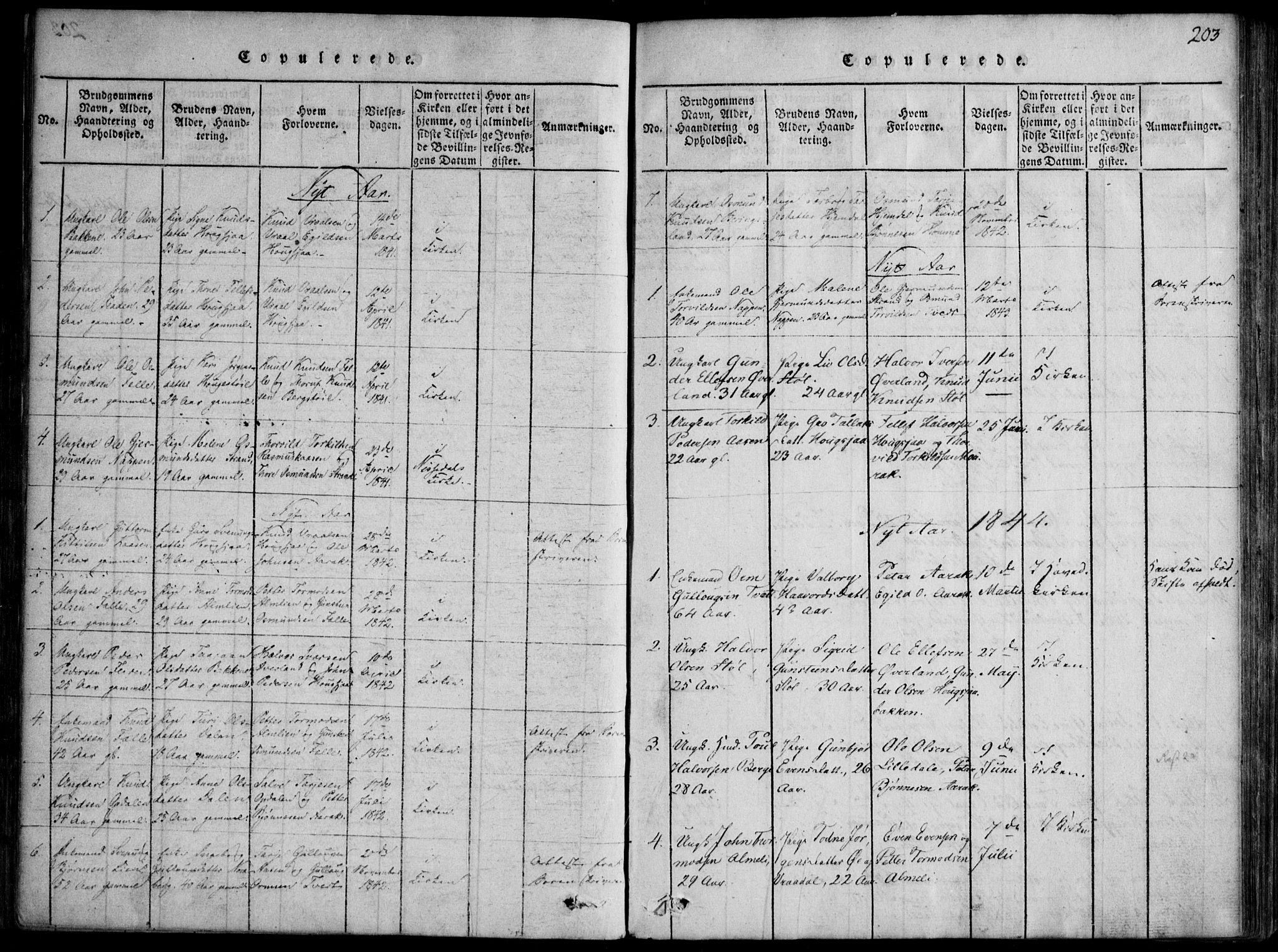 SAKO, Nissedal kirkebøker, F/Fb/L0001: Ministerialbok nr. II 1, 1814-1845, s. 203