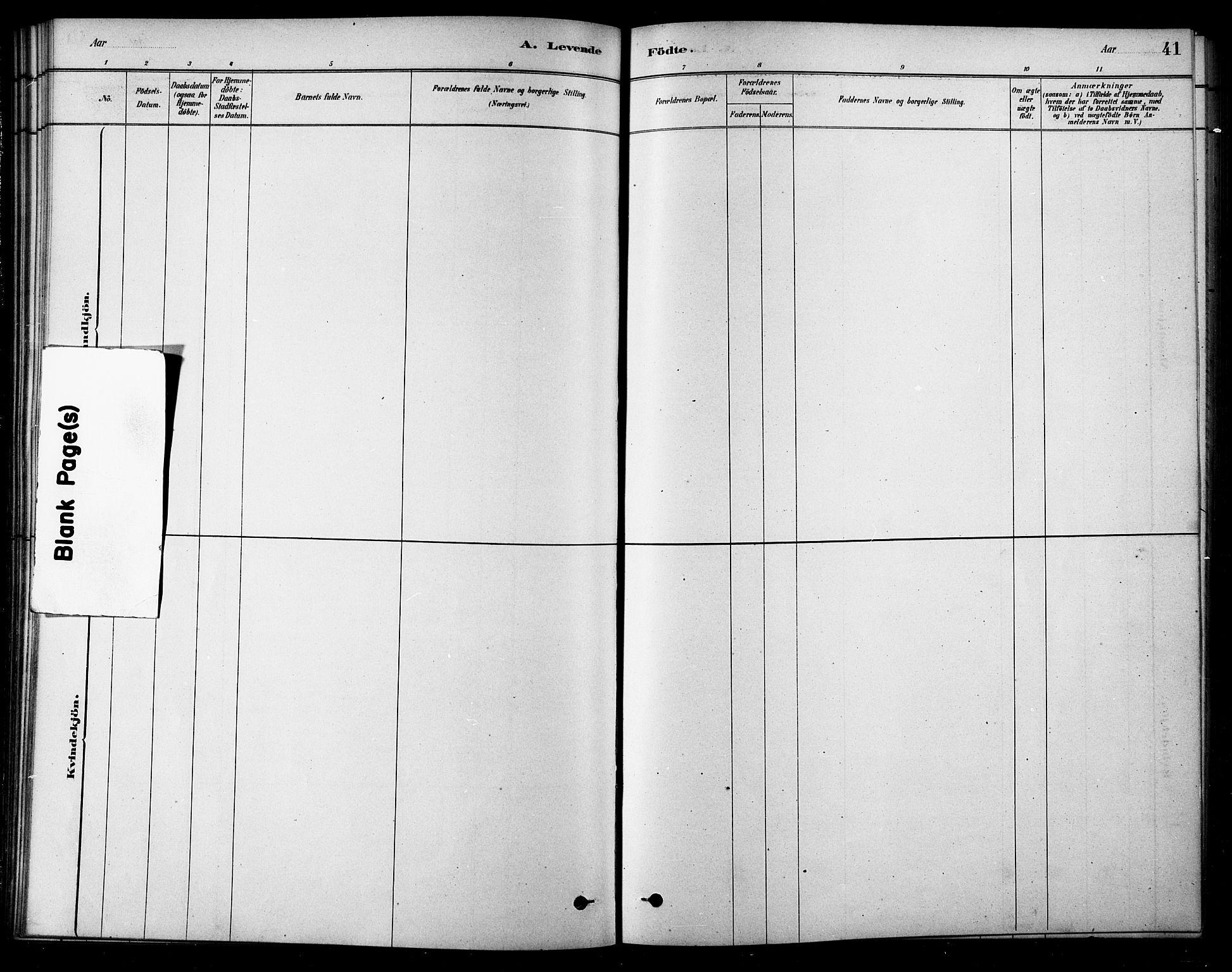 SAT, Ministerialprotokoller, klokkerbøker og fødselsregistre - Sør-Trøndelag, 685/L0972: Ministerialbok nr. 685A09, 1879-1890, s. 41