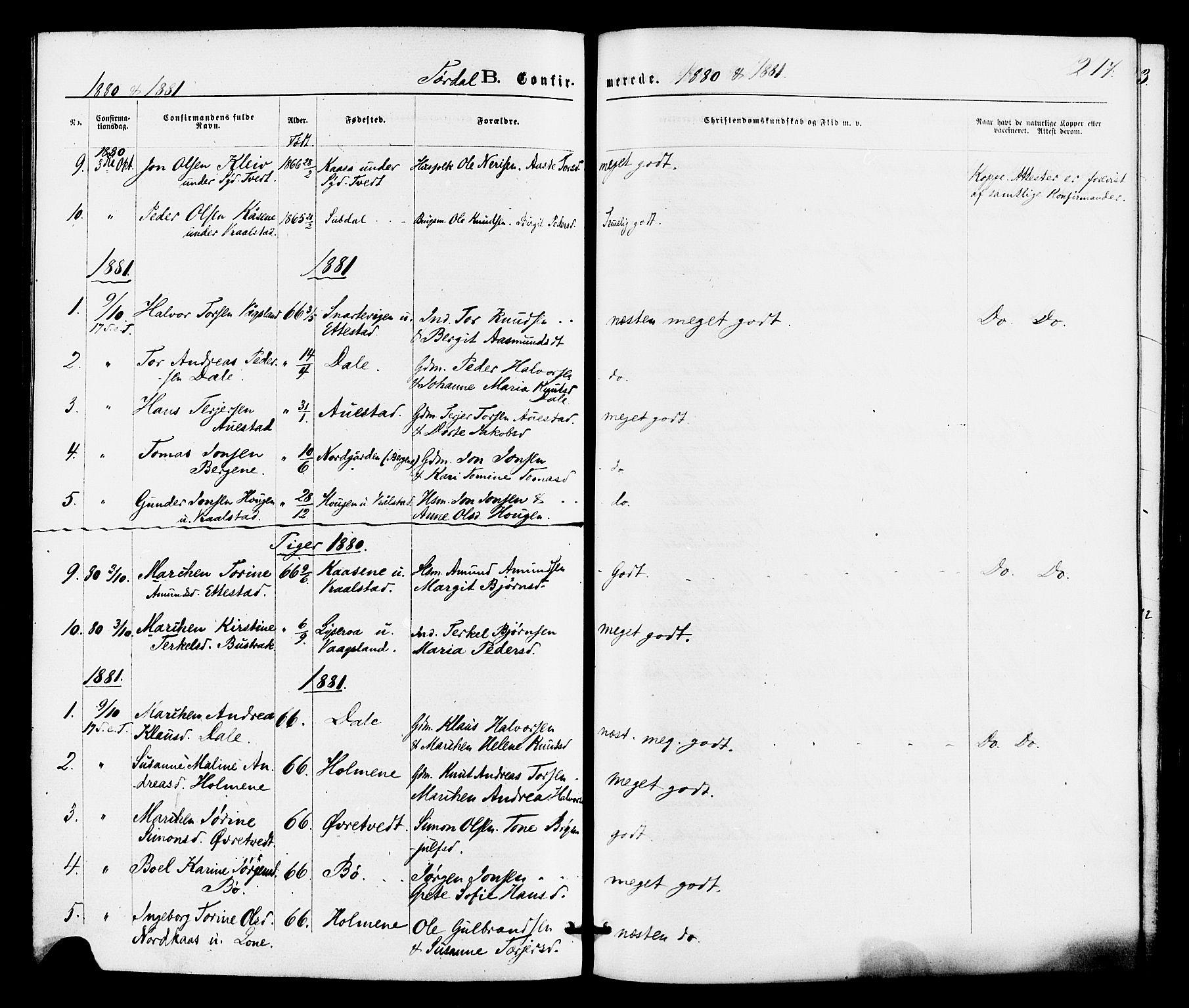 SAKO, Drangedal kirkebøker, F/Fa/L0009: Ministerialbok nr. 9 /2, 1872-1884, s. 217
