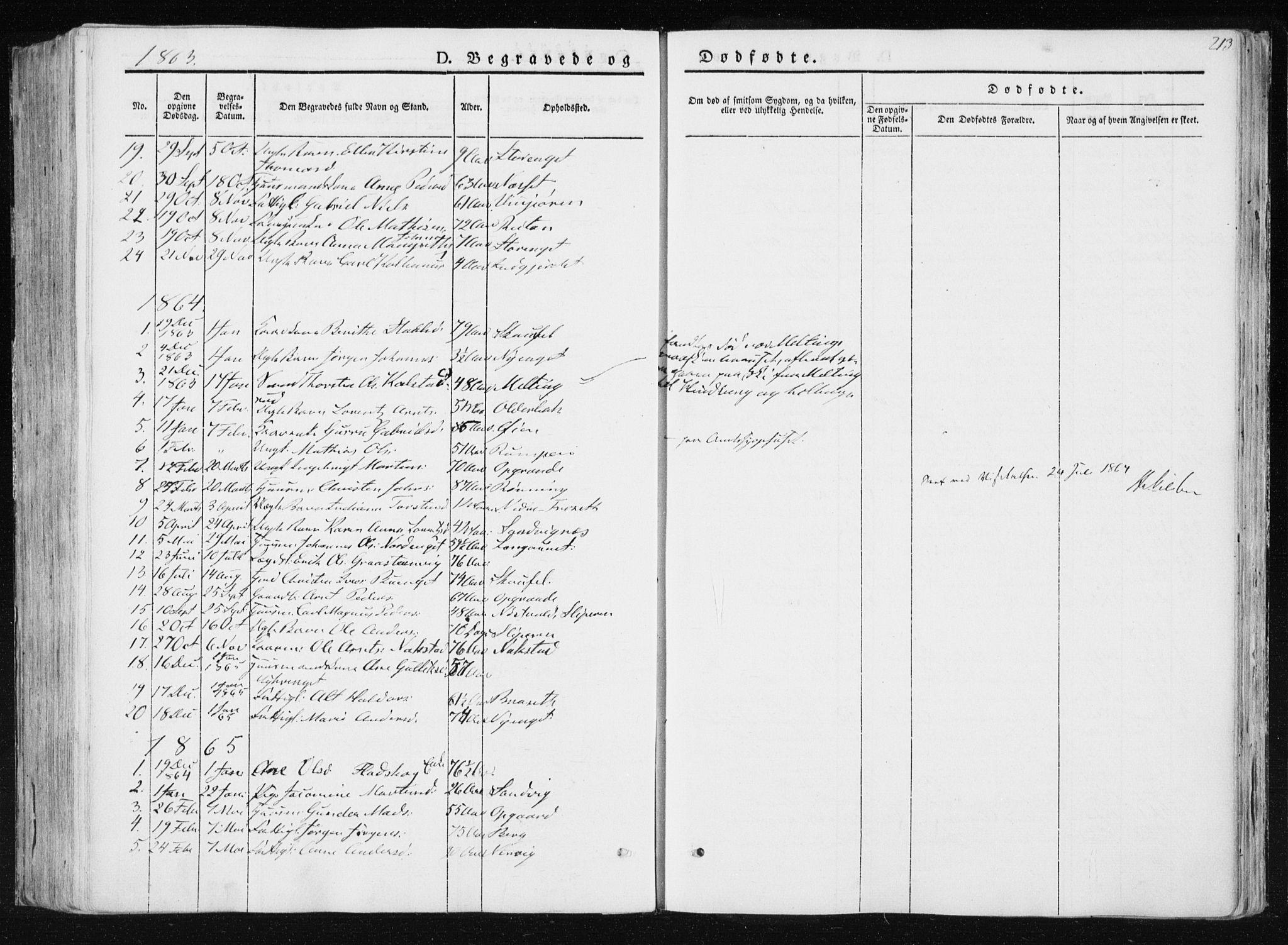 SAT, Ministerialprotokoller, klokkerbøker og fødselsregistre - Nord-Trøndelag, 733/L0323: Ministerialbok nr. 733A02, 1843-1870, s. 213