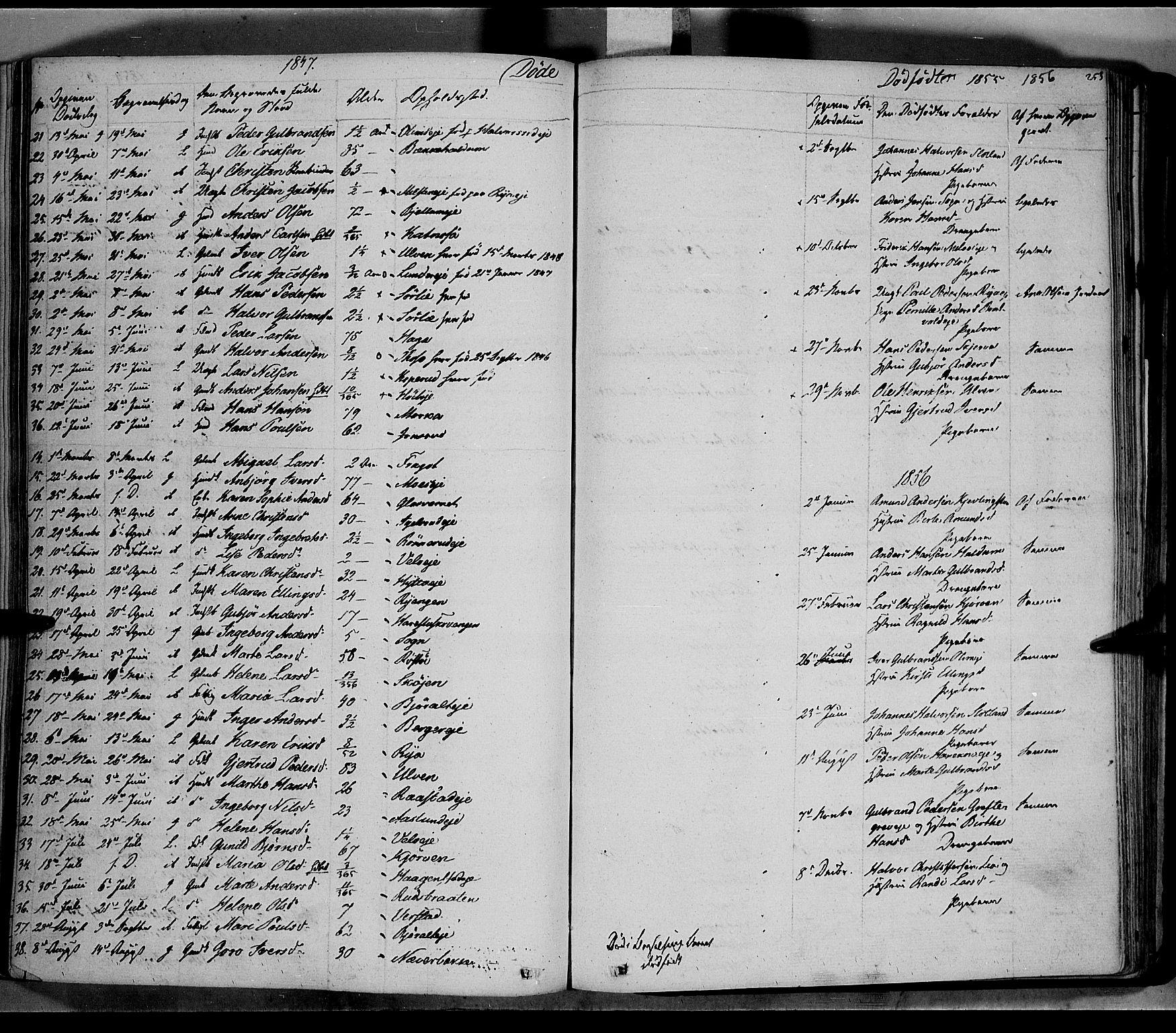 SAH, Jevnaker prestekontor, Ministerialbok nr. 6, 1837-1857, s. 253
