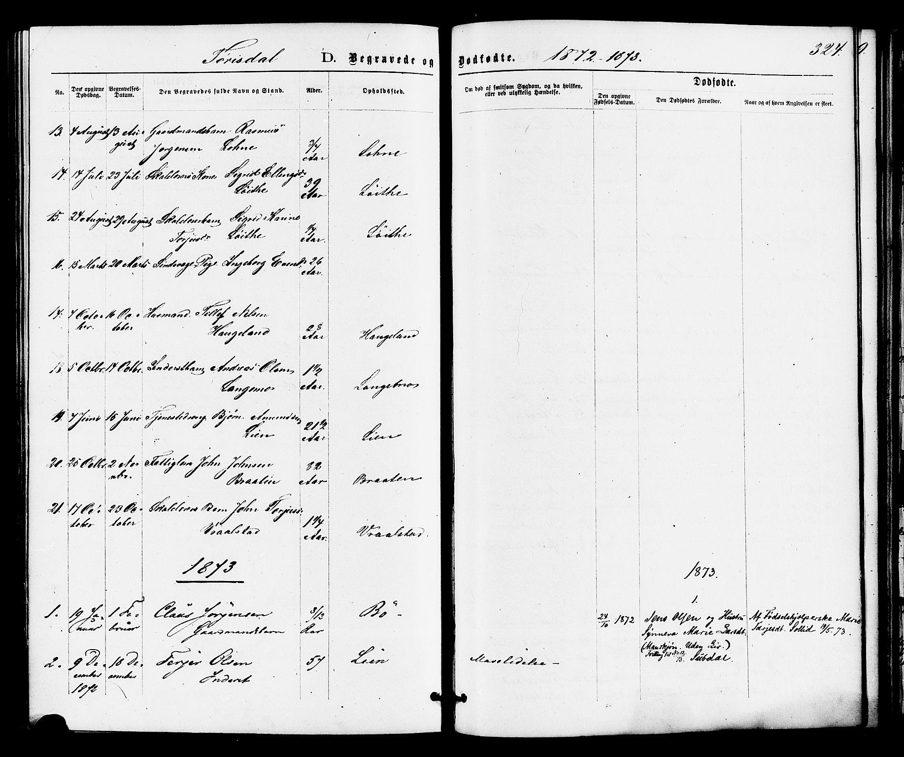SAKO, Drangedal kirkebøker, F/Fa/L0009: Ministerialbok nr. 9 /2, 1872-1884, s. 324