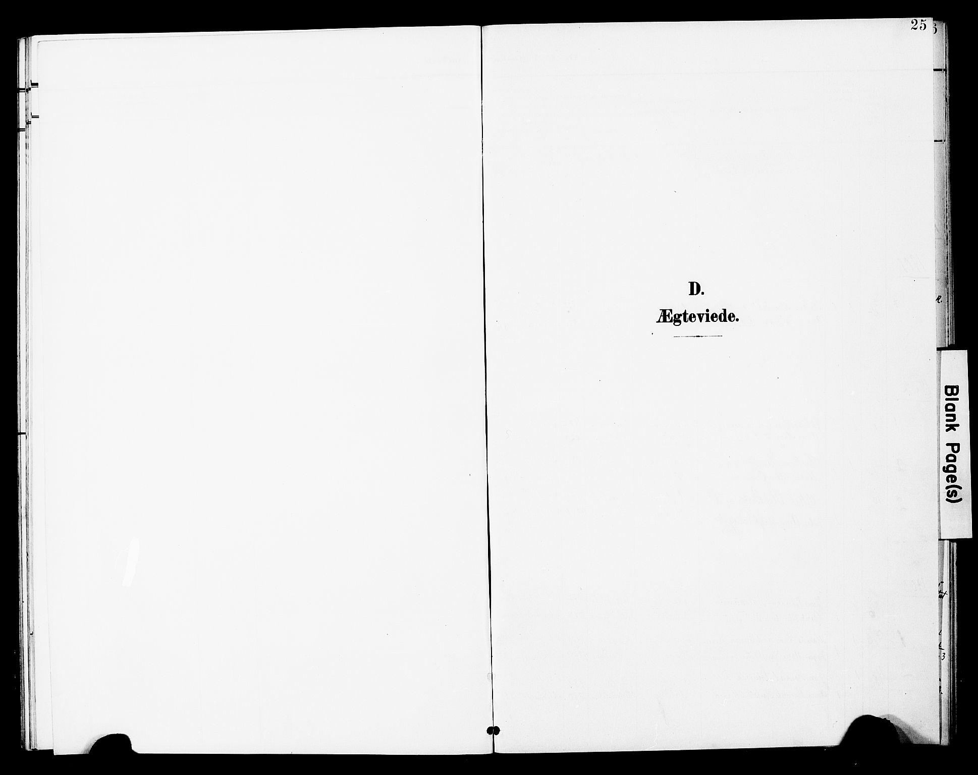 SAT, Ministerialprotokoller, klokkerbøker og fødselsregistre - Nord-Trøndelag, 748/L0464: Ministerialbok nr. 748A01, 1900-1908, s. 25