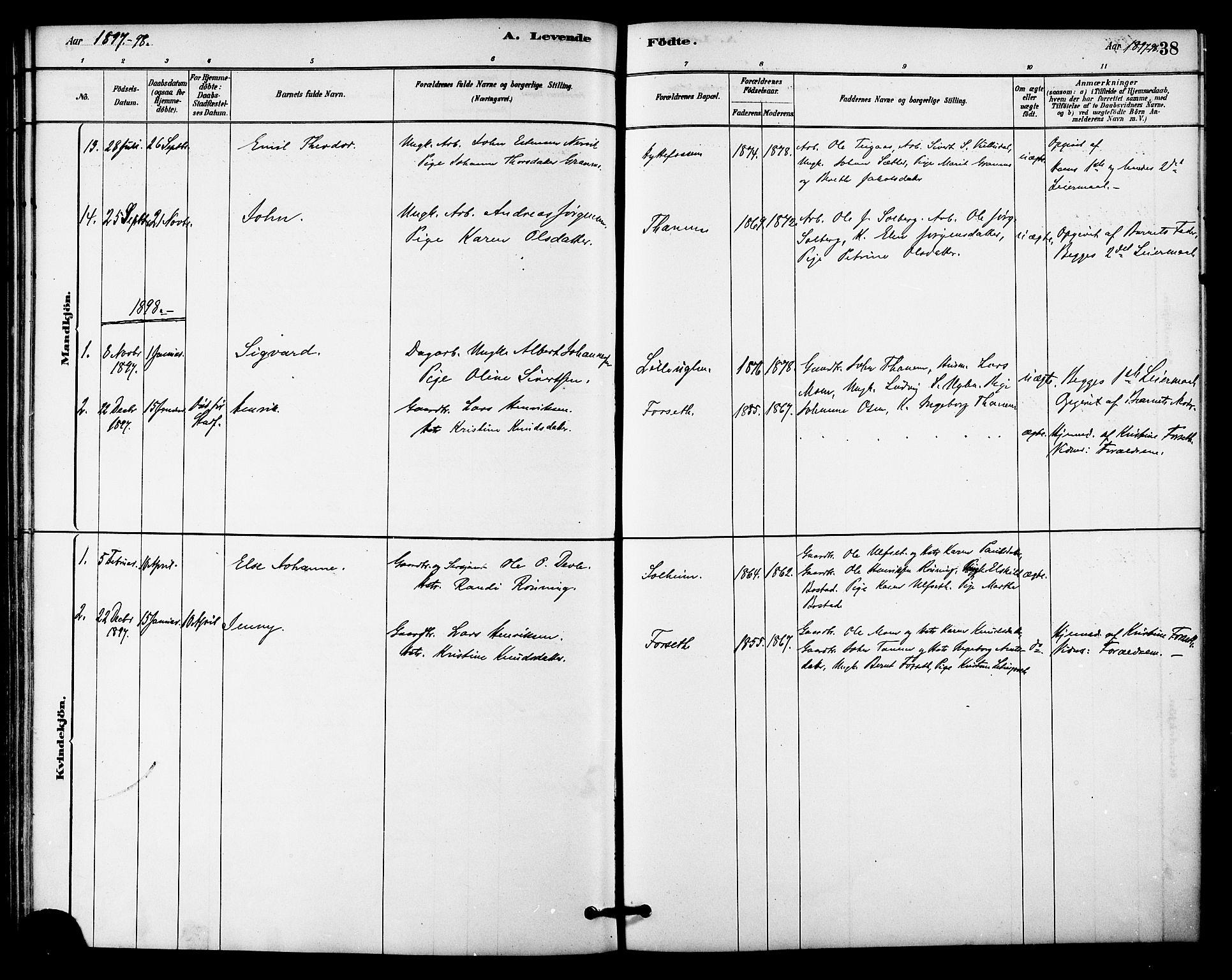SAT, Ministerialprotokoller, klokkerbøker og fødselsregistre - Sør-Trøndelag, 618/L0444: Ministerialbok nr. 618A07, 1880-1898, s. 38