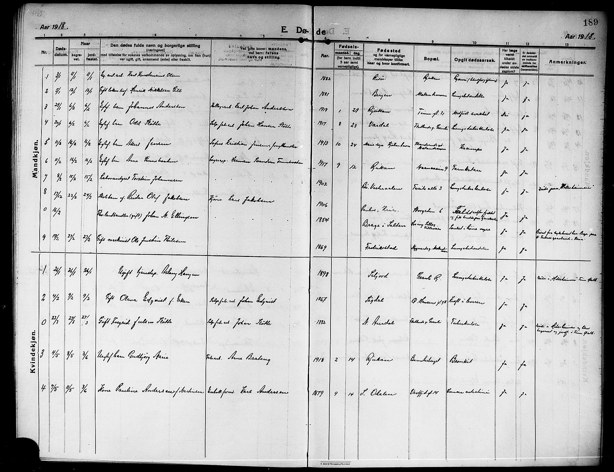 SAKO, Rjukan kirkebøker, G/Ga/L0002: Klokkerbok nr. 2, 1913-1920, s. 189