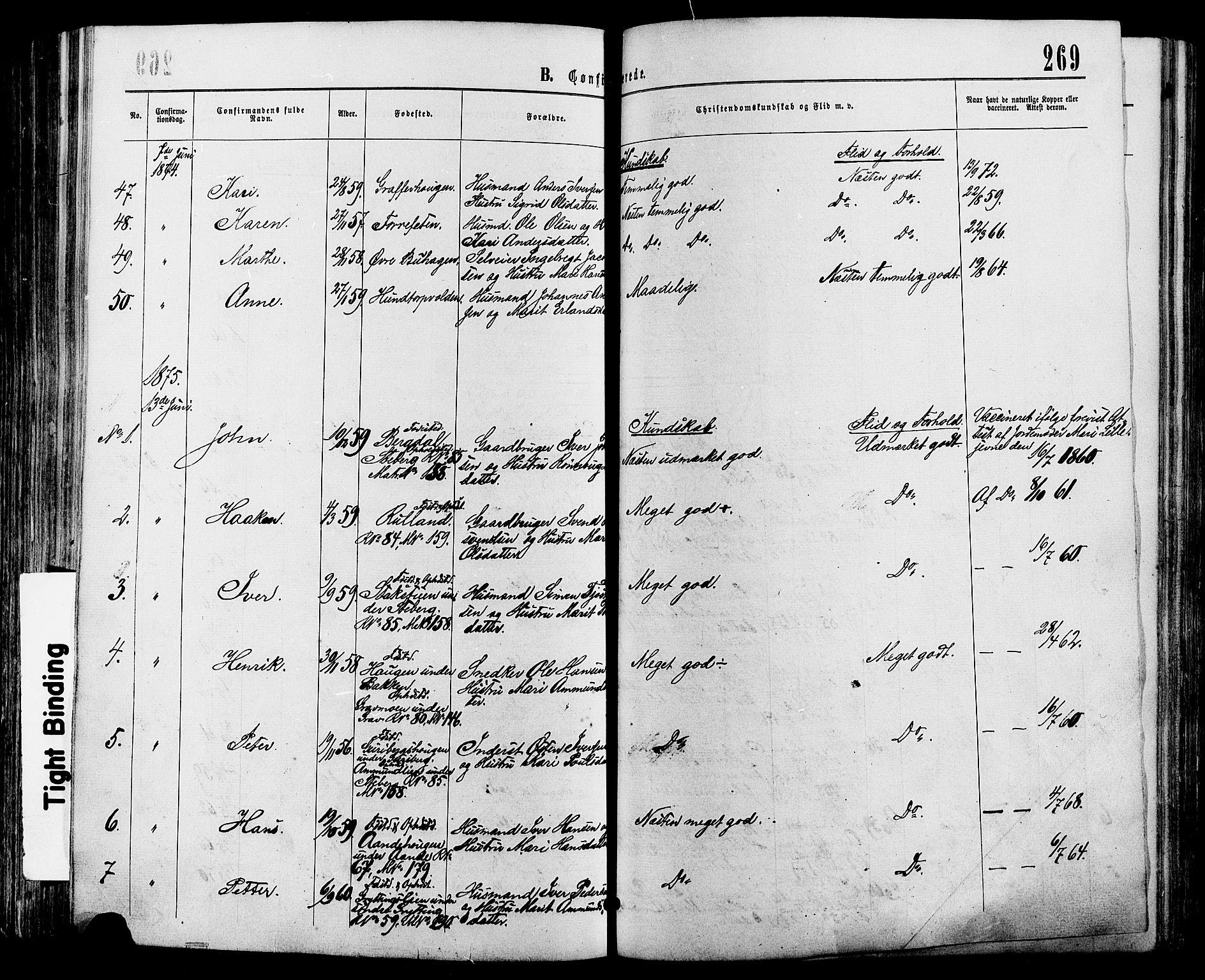 SAH, Sør-Fron prestekontor, H/Ha/Haa/L0002: Ministerialbok nr. 2, 1864-1880, s. 269