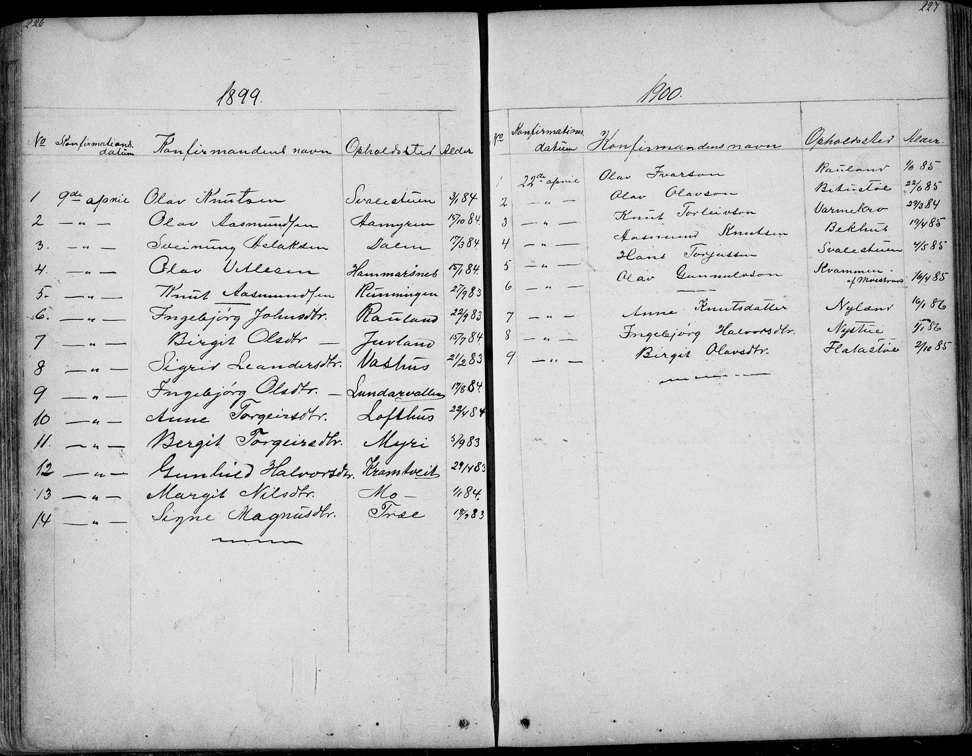 SAKO, Rauland kirkebøker, G/Ga/L0002: Klokkerbok nr. I 2, 1849-1935, s. 226-227