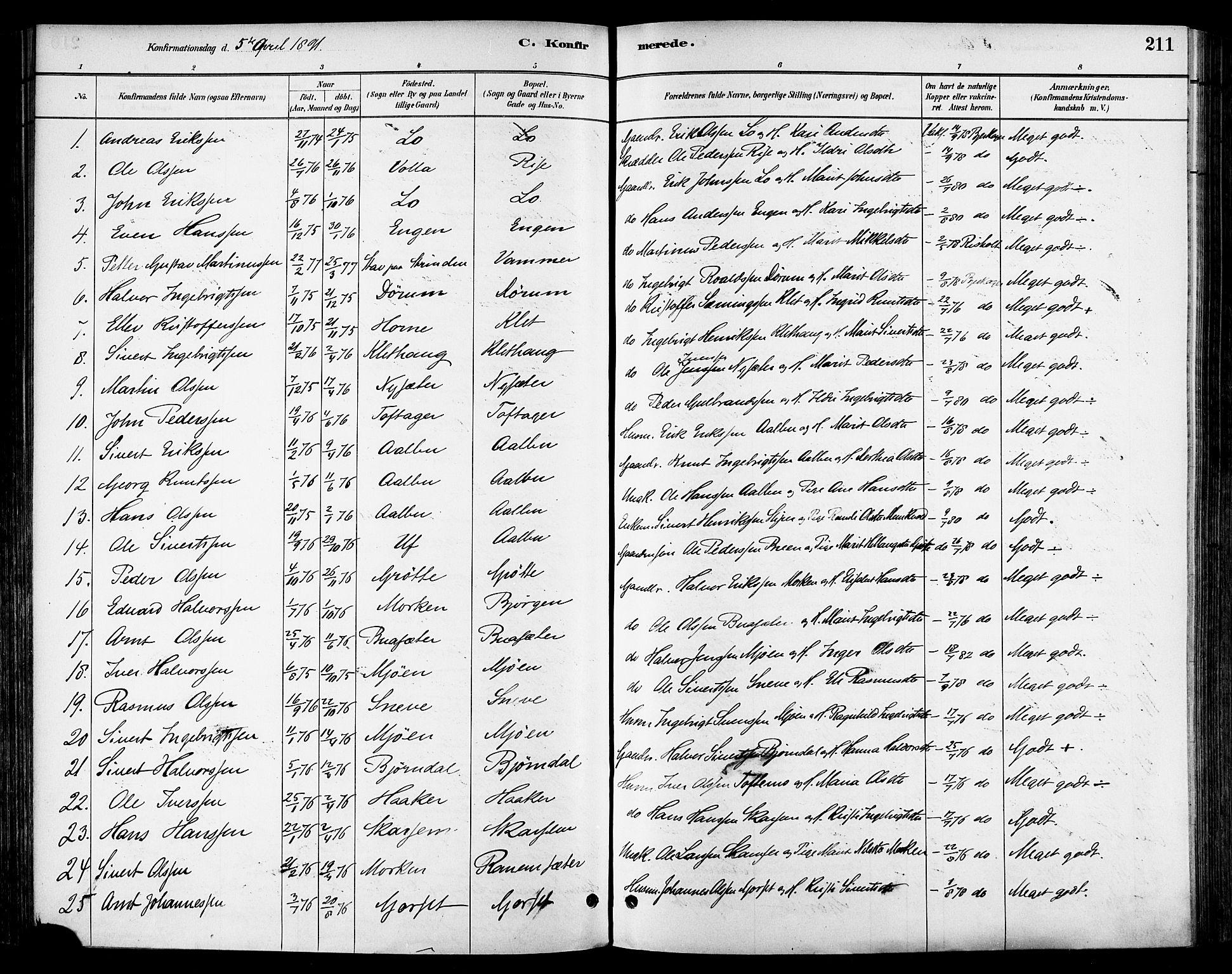 SAT, Ministerialprotokoller, klokkerbøker og fødselsregistre - Sør-Trøndelag, 678/L0901: Ministerialbok nr. 678A10, 1881-1894, s. 211
