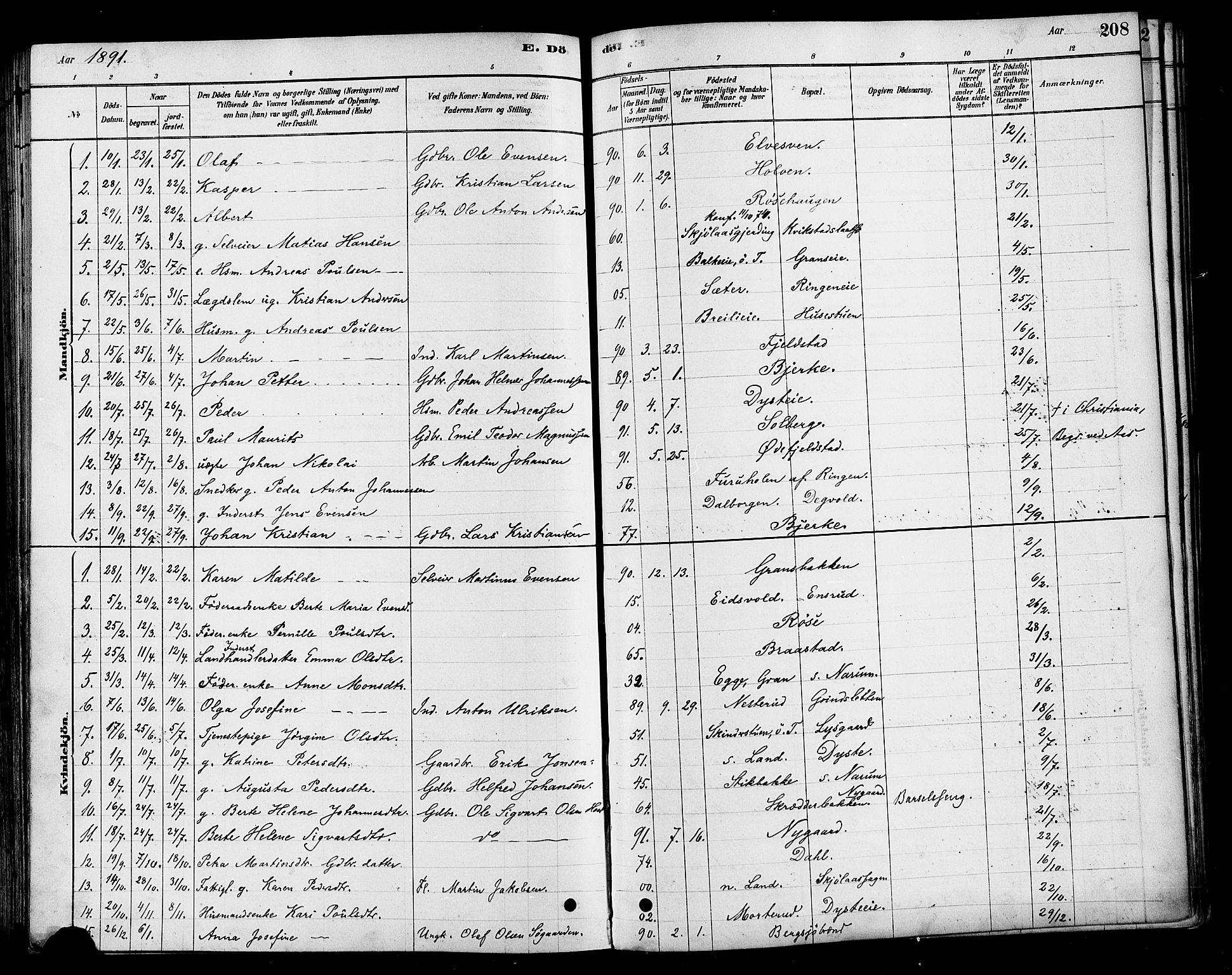 SAH, Vestre Toten prestekontor, H/Ha/Haa/L0010: Ministerialbok nr. 10, 1878-1894, s. 208