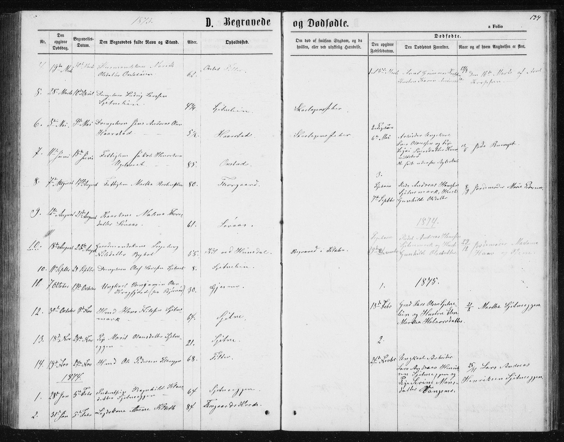 SAT, Ministerialprotokoller, klokkerbøker og fødselsregistre - Sør-Trøndelag, 621/L0459: Klokkerbok nr. 621C02, 1866-1895, s. 134