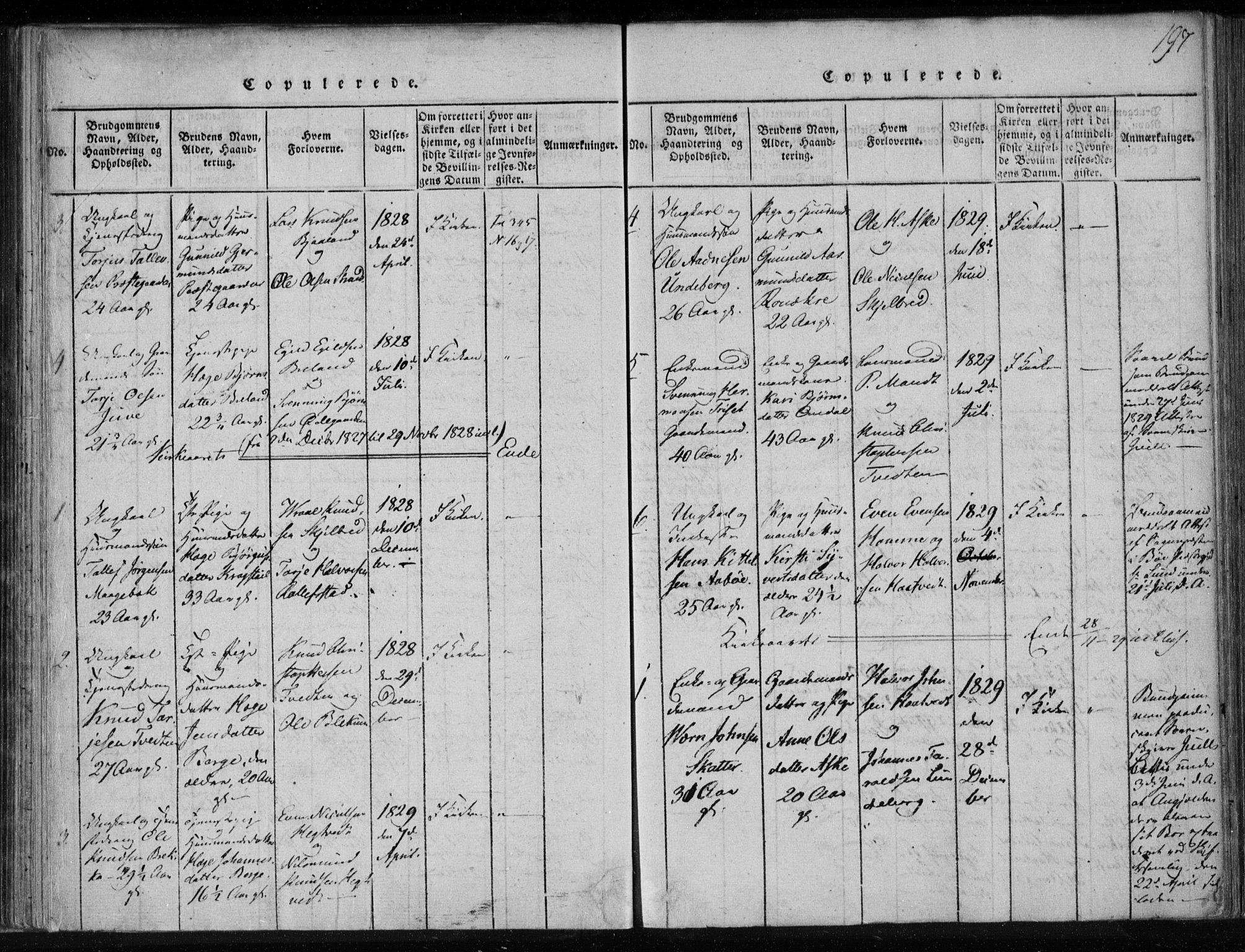 SAKO, Lårdal kirkebøker, F/Fa/L0005: Ministerialbok nr. I 5, 1815-1860, s. 197