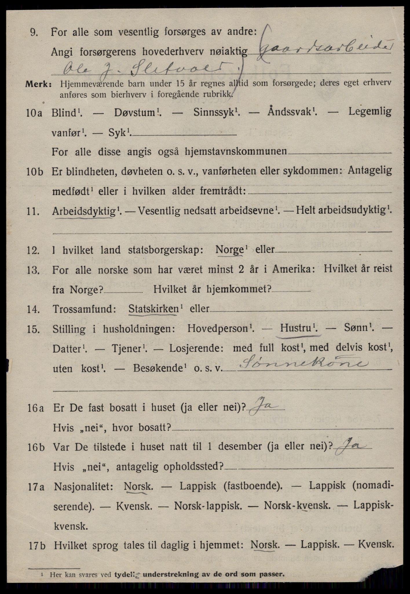 SAT, Folketelling 1920 for 1634 Oppdal herred, 1920, s. 6802