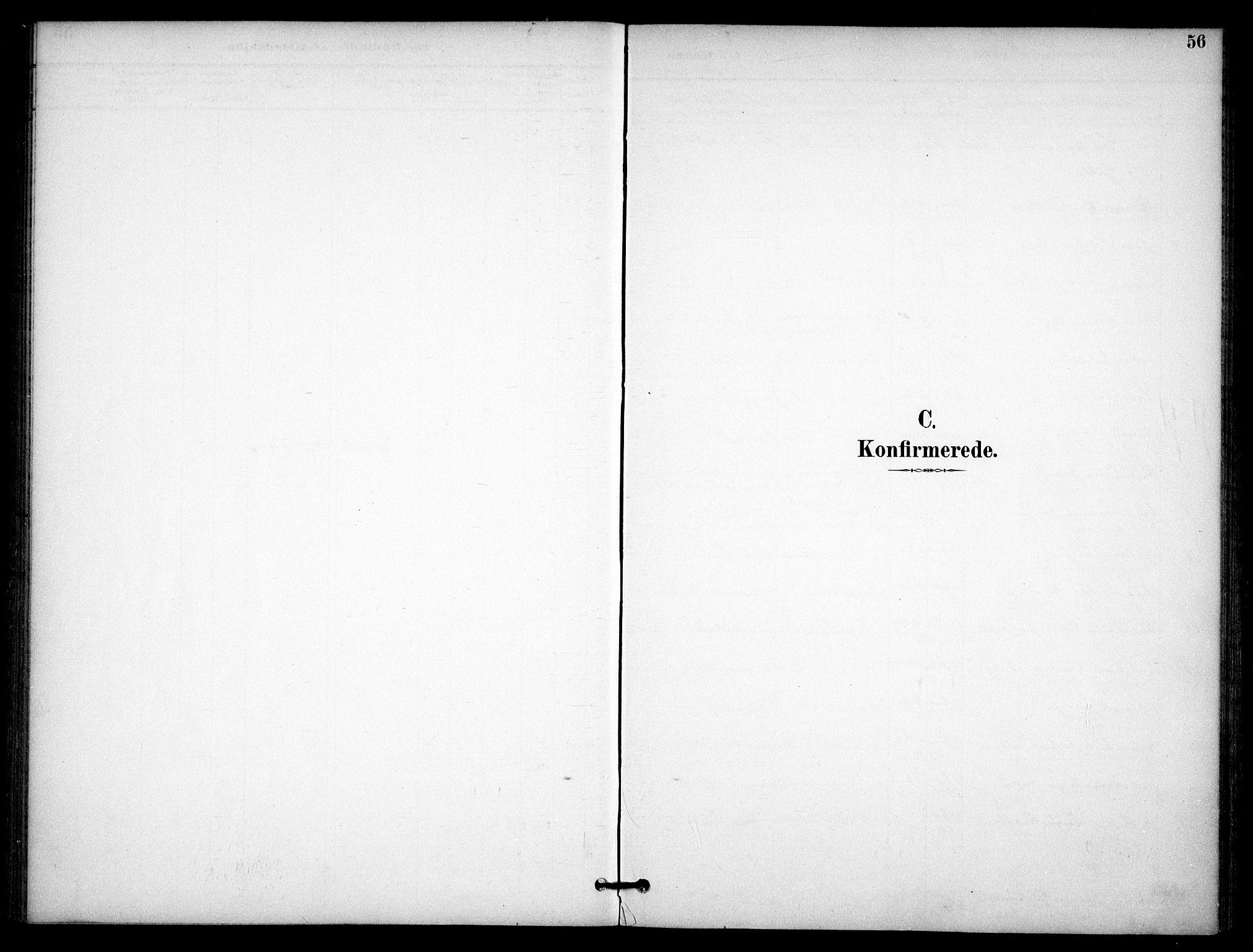 SAO, Nannestad prestekontor Kirkebøker, F/Fb/L0002: Ministerialbok nr. II 2, 1891-1909, s. 56