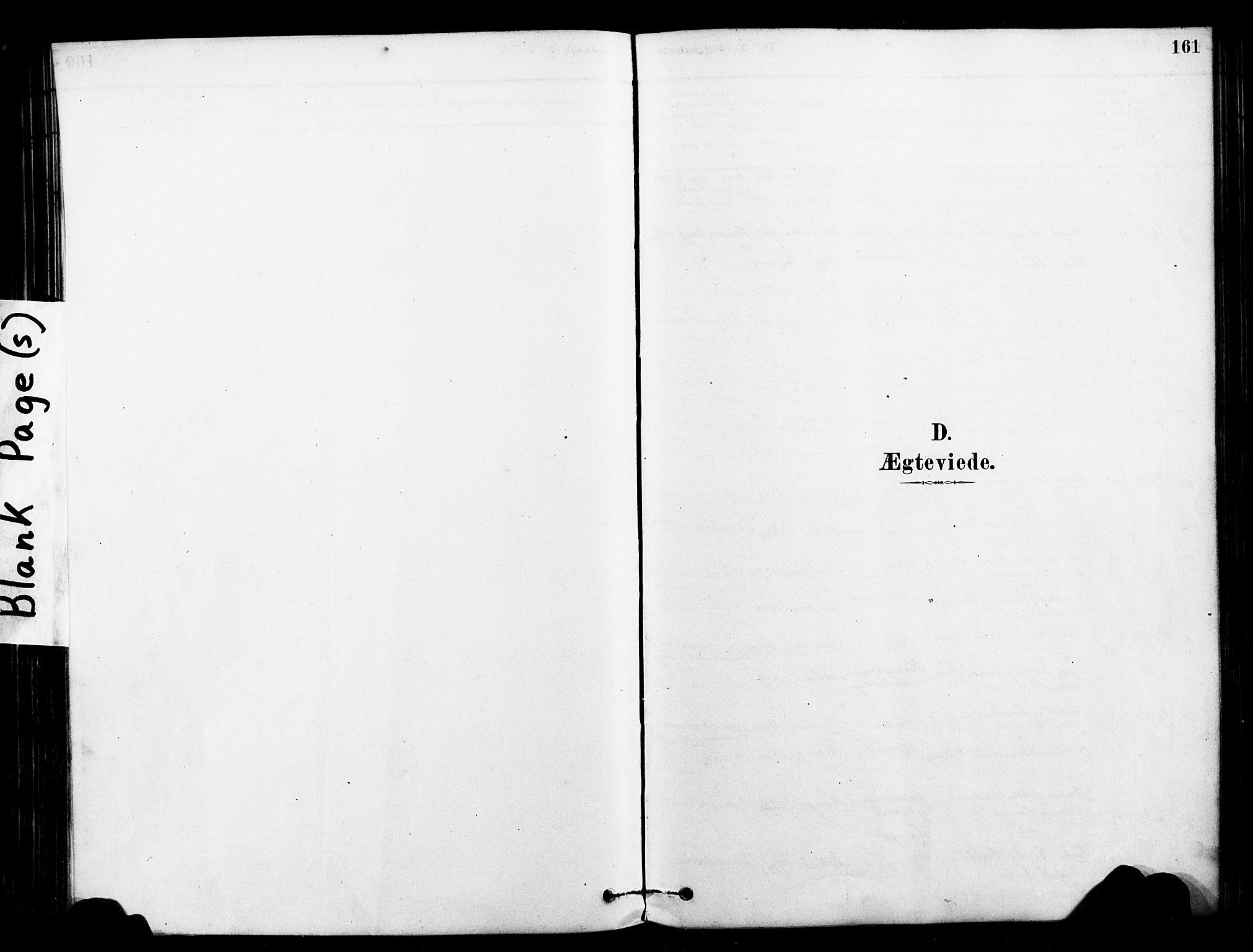 SAT, Ministerialprotokoller, klokkerbøker og fødselsregistre - Sør-Trøndelag, 640/L0578: Ministerialbok nr. 640A03, 1879-1889, s. 161
