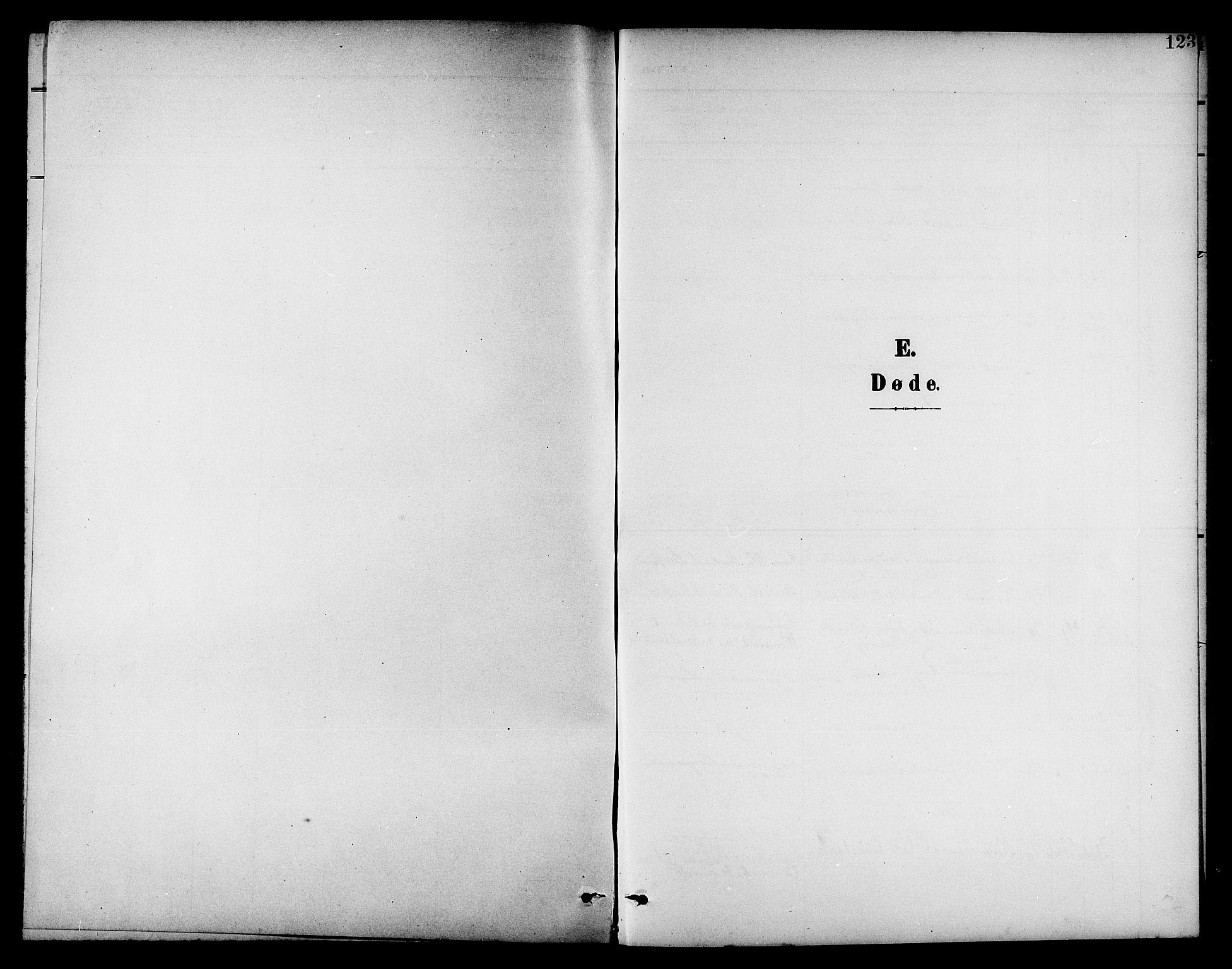 SAT, Ministerialprotokoller, klokkerbøker og fødselsregistre - Nord-Trøndelag, 742/L0412: Klokkerbok nr. 742C03, 1898-1910, s. 123