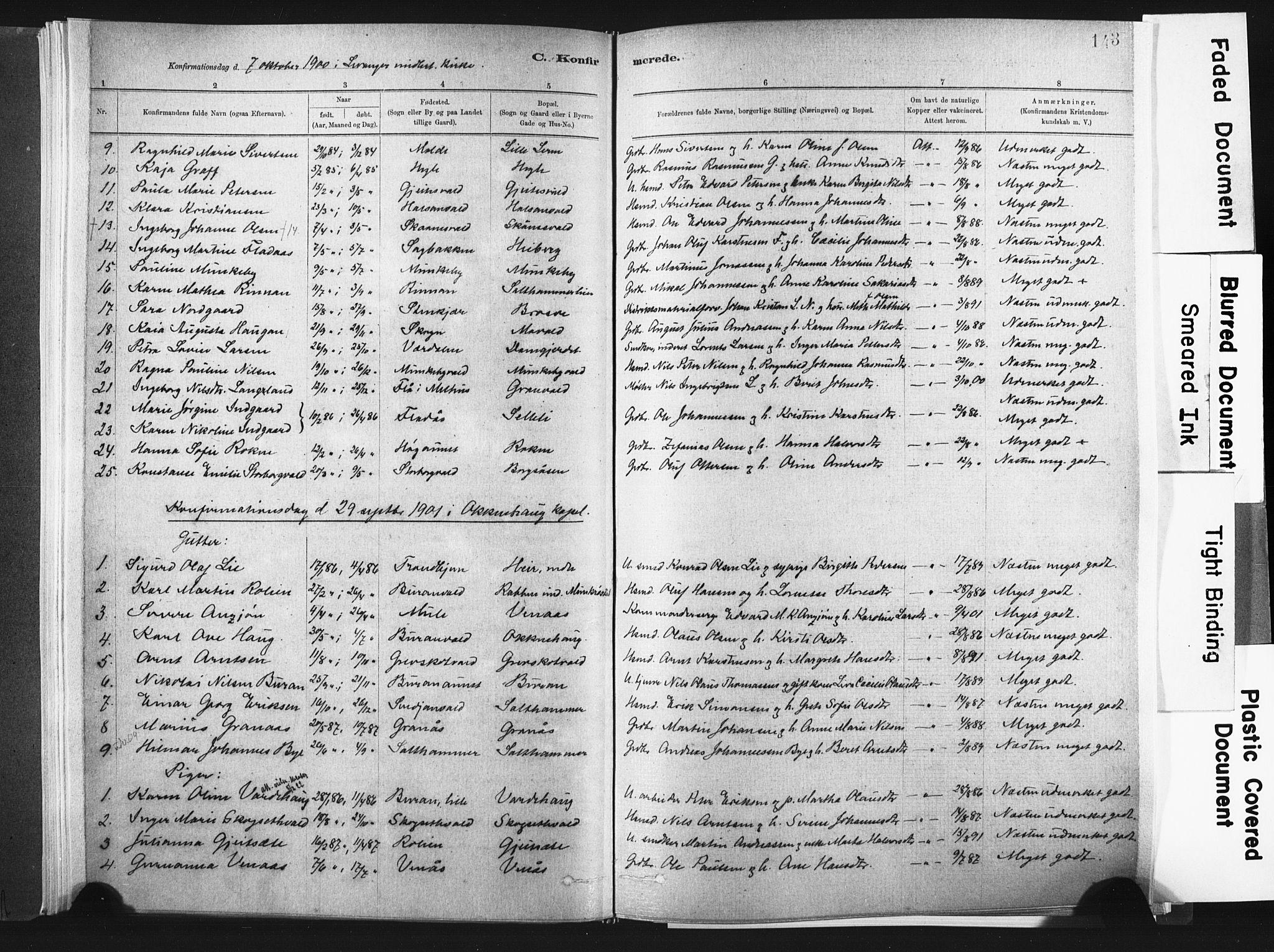 SAT, Ministerialprotokoller, klokkerbøker og fødselsregistre - Nord-Trøndelag, 721/L0207: Ministerialbok nr. 721A02, 1880-1911, s. 143