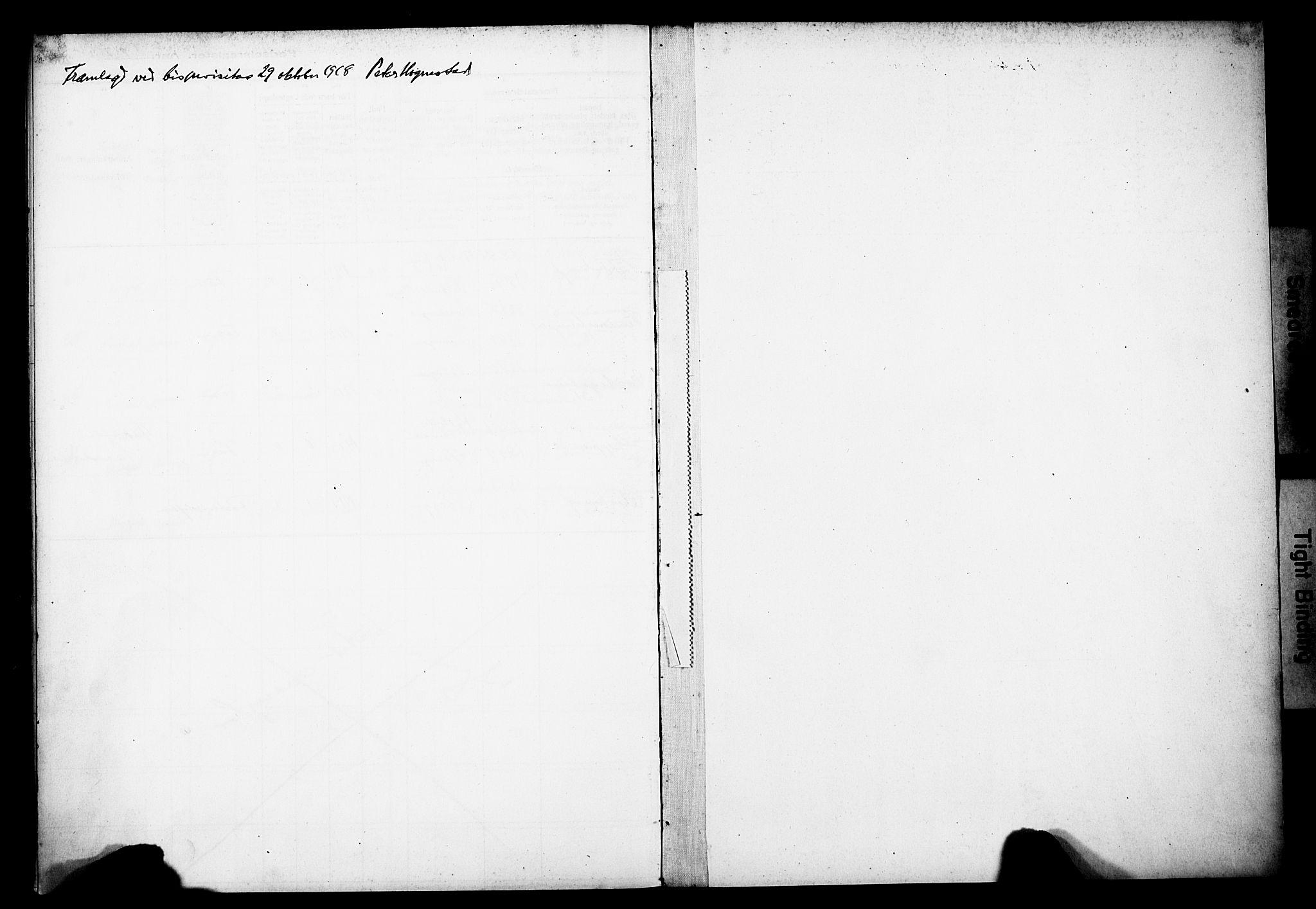 SAB, Domkirken Sokneprestembete, I/Id/L00A1: Fødselsregister nr. A 1, 1916-1923
