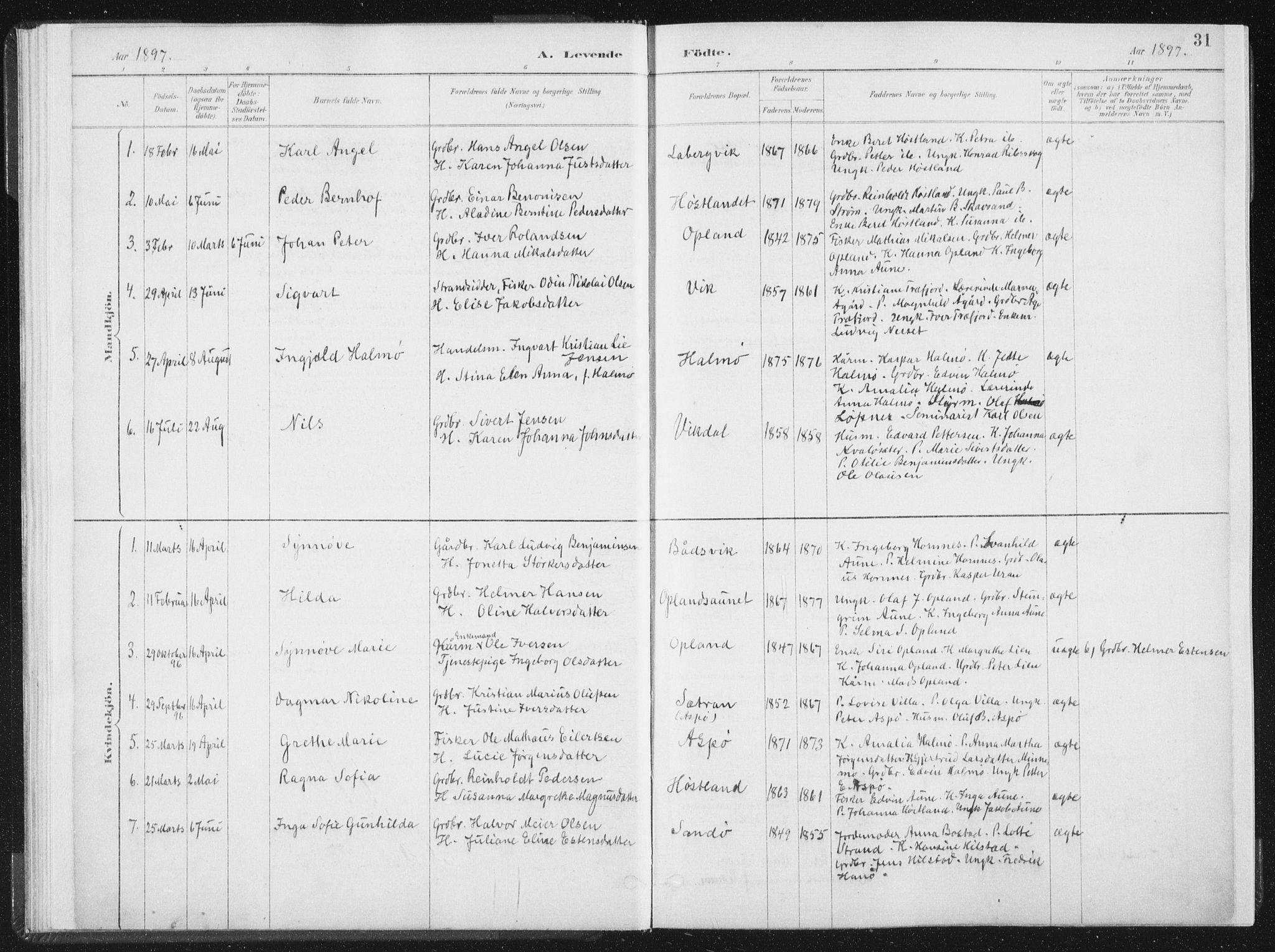 SAT, Ministerialprotokoller, klokkerbøker og fødselsregistre - Nord-Trøndelag, 771/L0597: Ministerialbok nr. 771A04, 1885-1910, s. 31