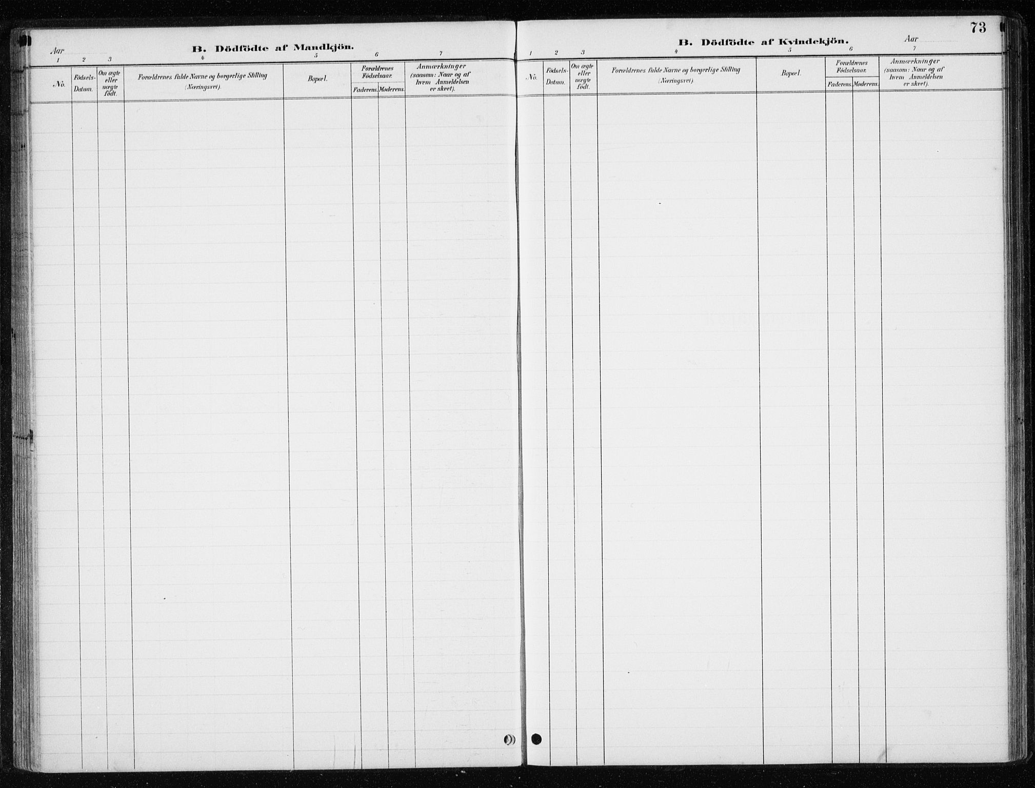 SAT, Ministerialprotokoller, klokkerbøker og fødselsregistre - Nord-Trøndelag, 710/L0096: Klokkerbok nr. 710C01, 1892-1925, s. 73