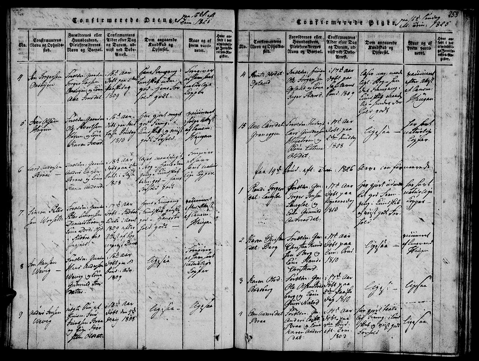 SAT, Ministerialprotokoller, klokkerbøker og fødselsregistre - Sør-Trøndelag, 612/L0372: Ministerialbok nr. 612A06 /1, 1816-1828, s. 258