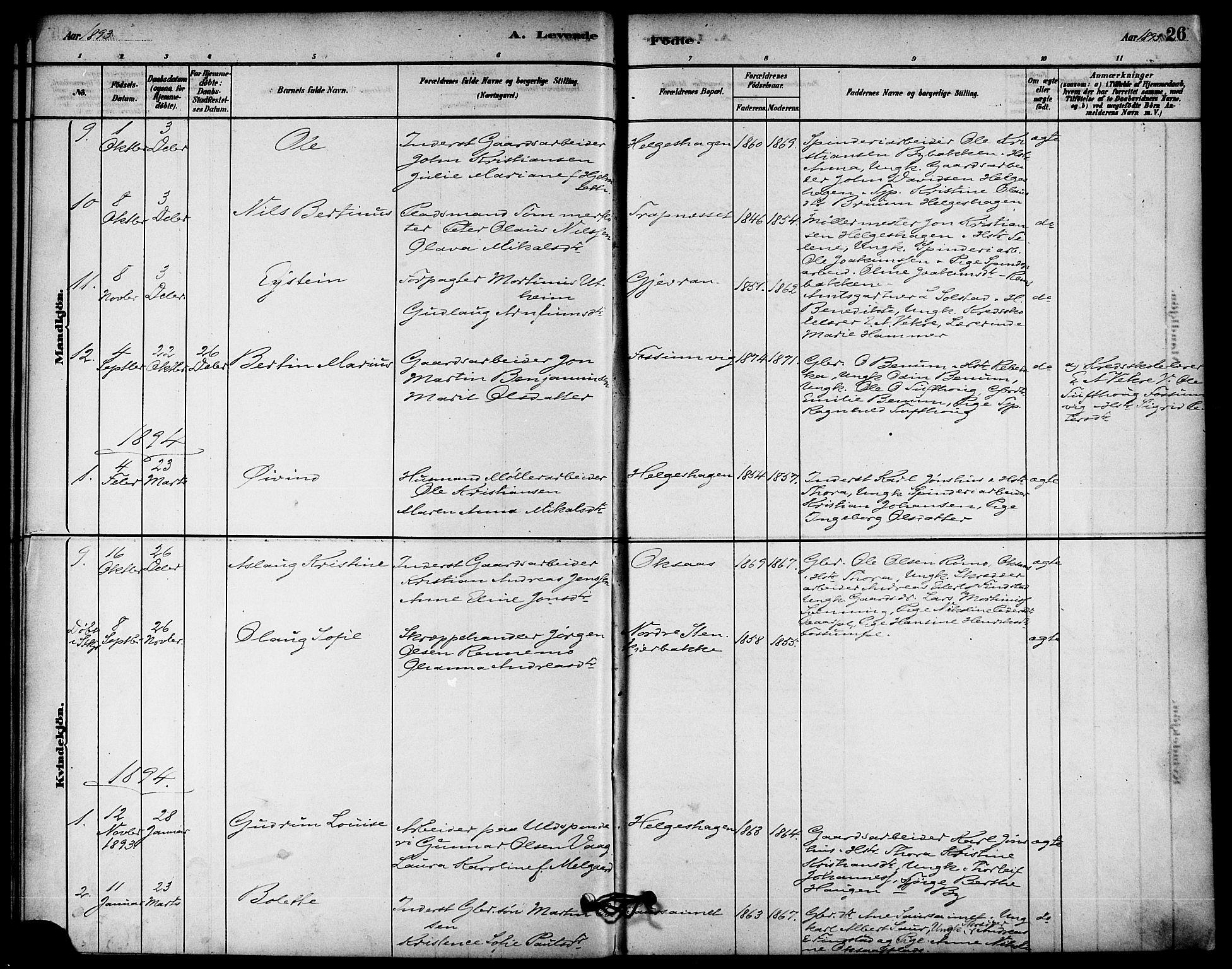 SAT, Ministerialprotokoller, klokkerbøker og fødselsregistre - Nord-Trøndelag, 740/L0378: Ministerialbok nr. 740A01, 1881-1895, s. 26