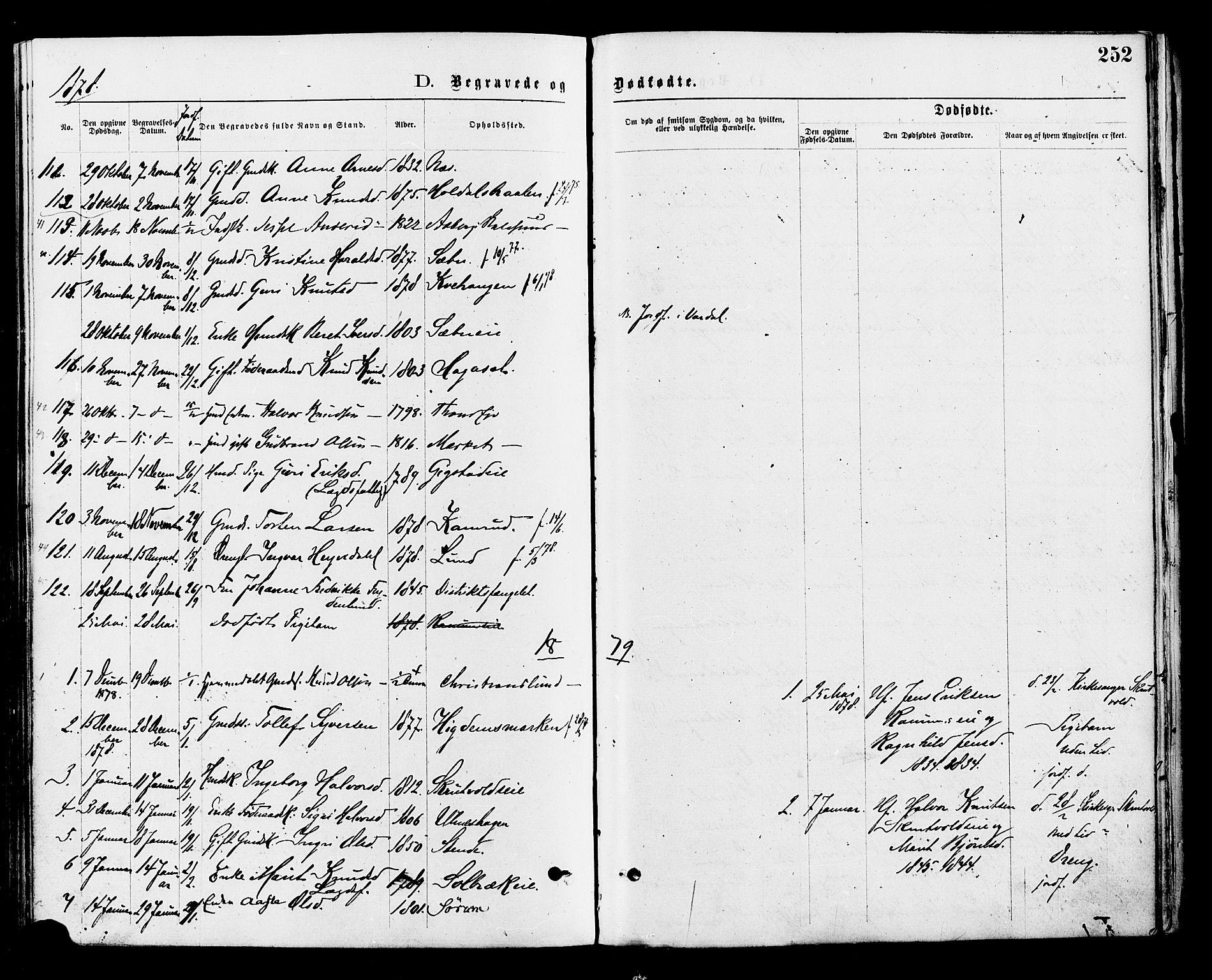 SAH, Nord-Aurdal prestekontor, Ministerialbok nr. 9, 1876-1882, s. 252