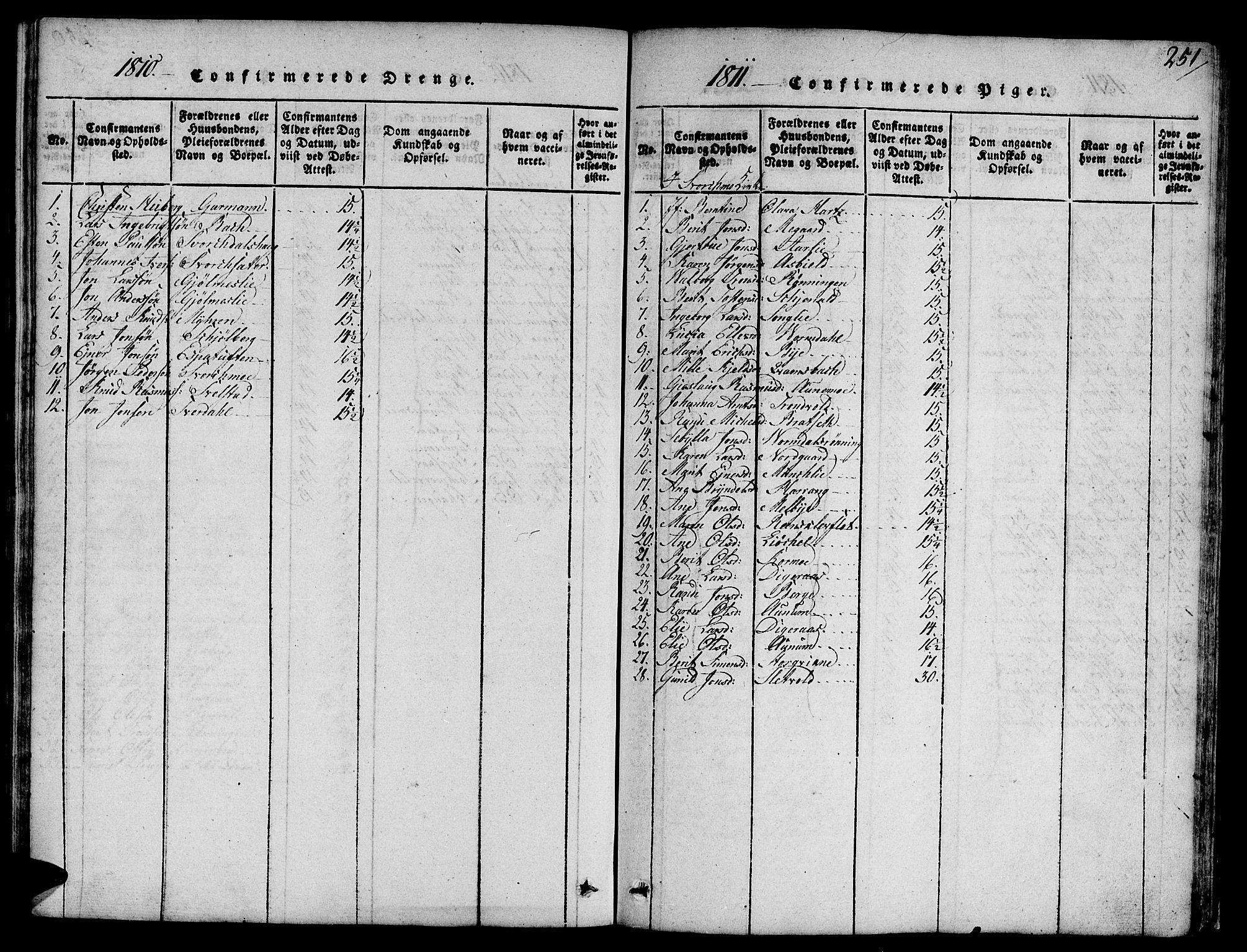 SAT, Ministerialprotokoller, klokkerbøker og fødselsregistre - Sør-Trøndelag, 668/L0803: Ministerialbok nr. 668A03, 1800-1826, s. 251